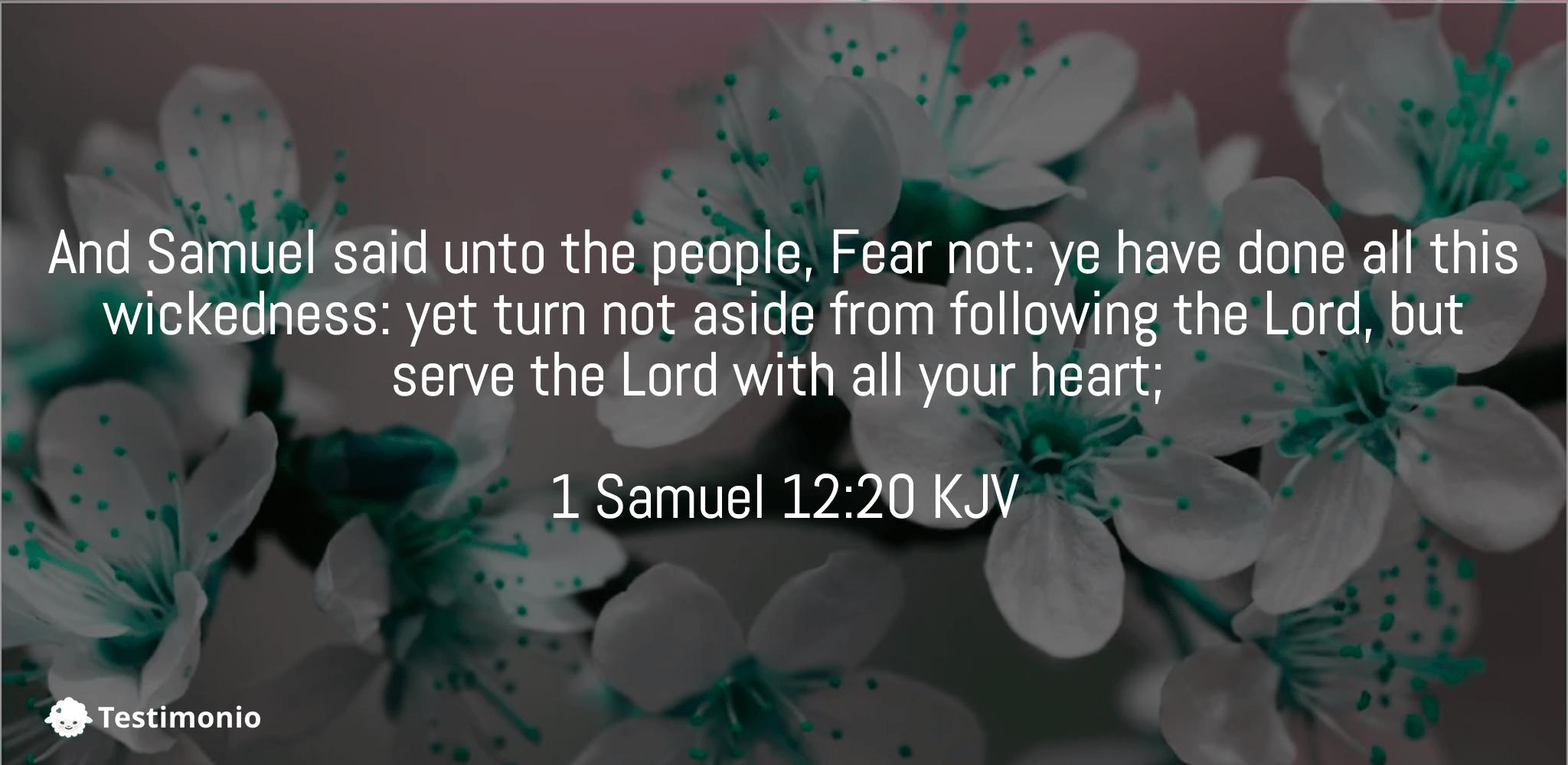 1 Samuel 12:20