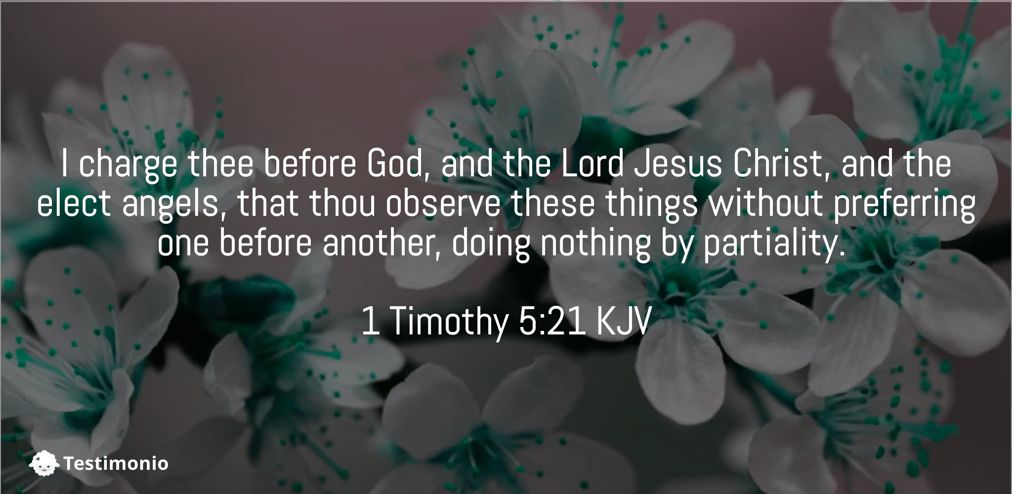 1 Timothy 5:21