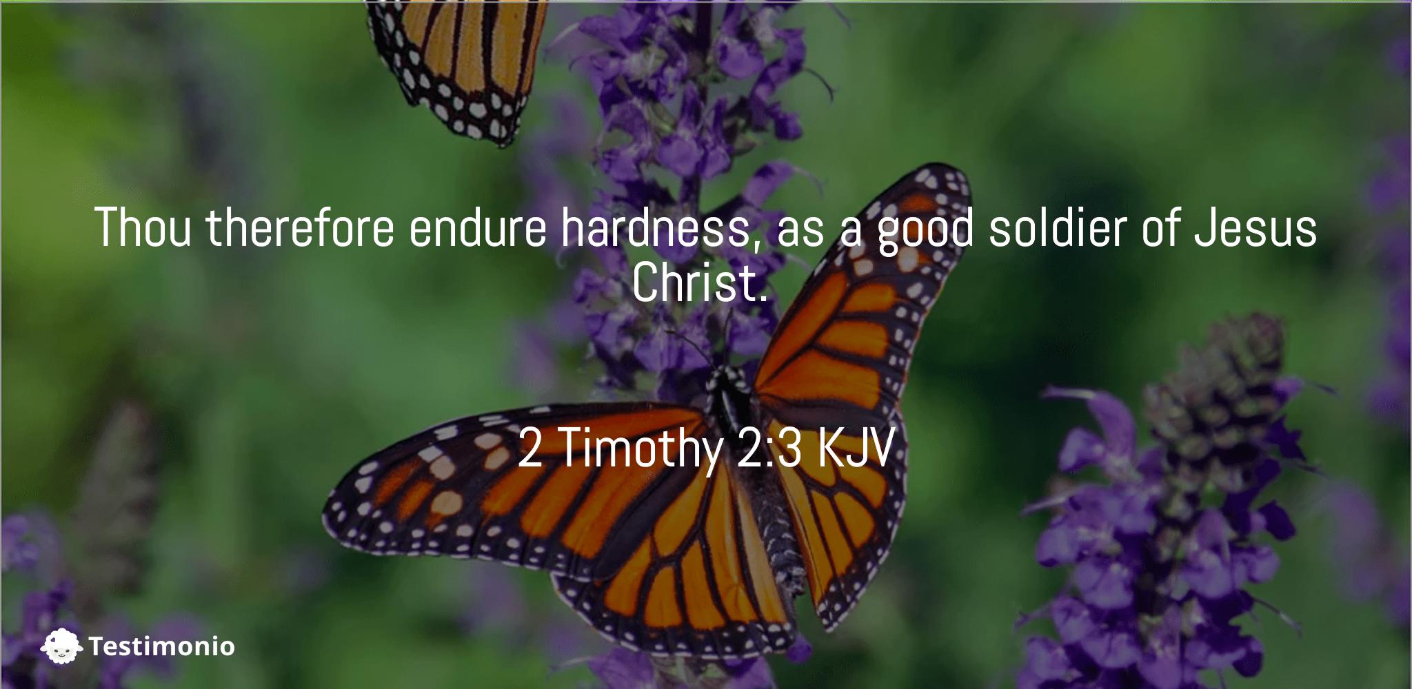 2 Timothy 2:3