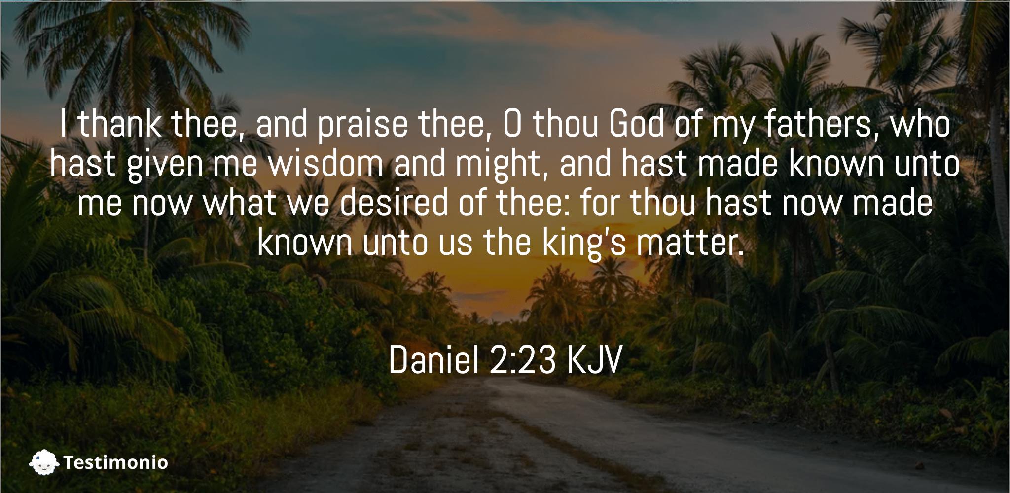 Daniel 2:23
