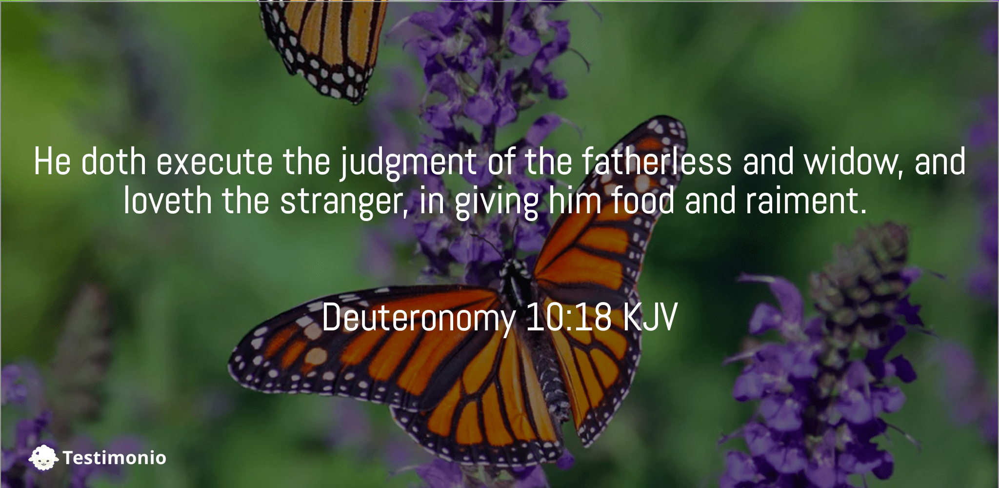 Deuteronomy 10:18