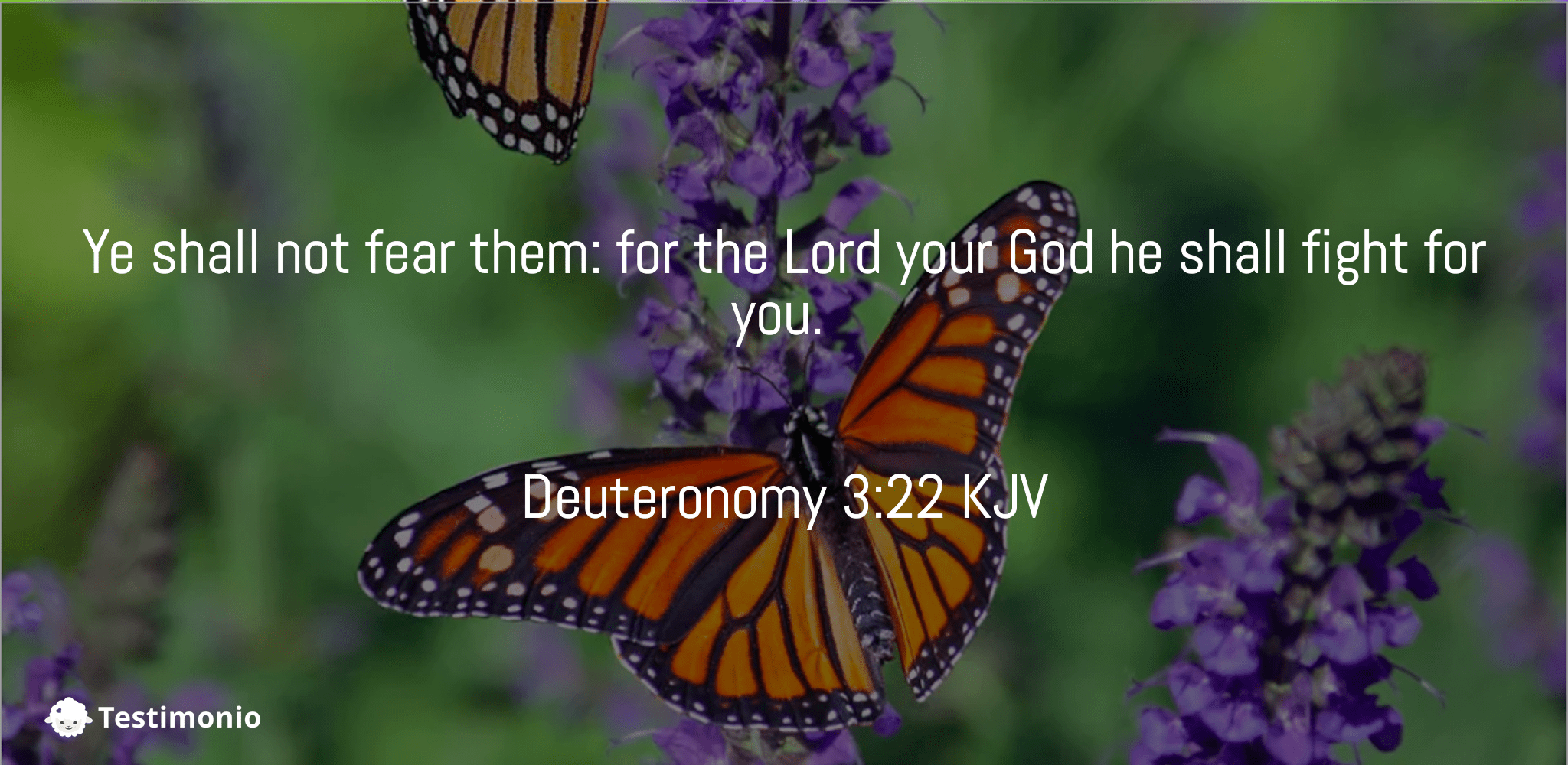 Deuteronomy 3:22