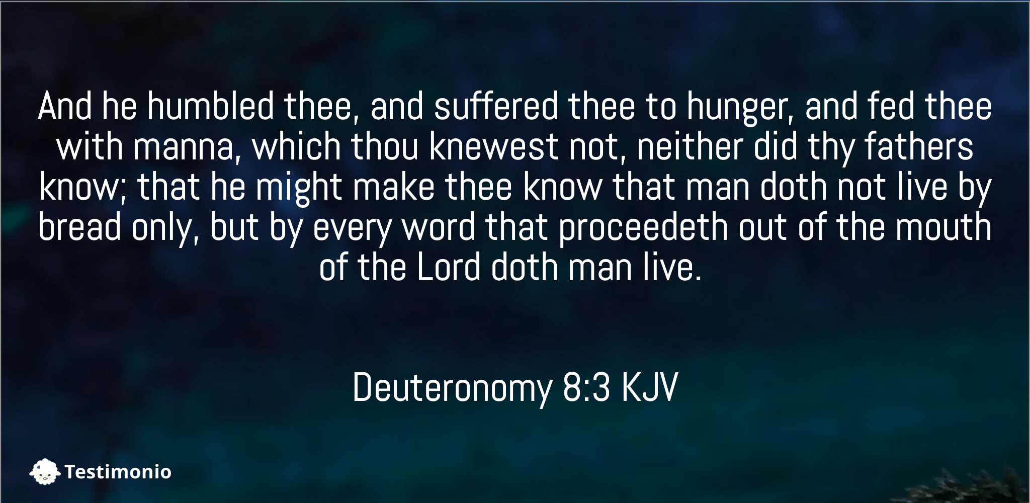 Deuteronomy 8:3