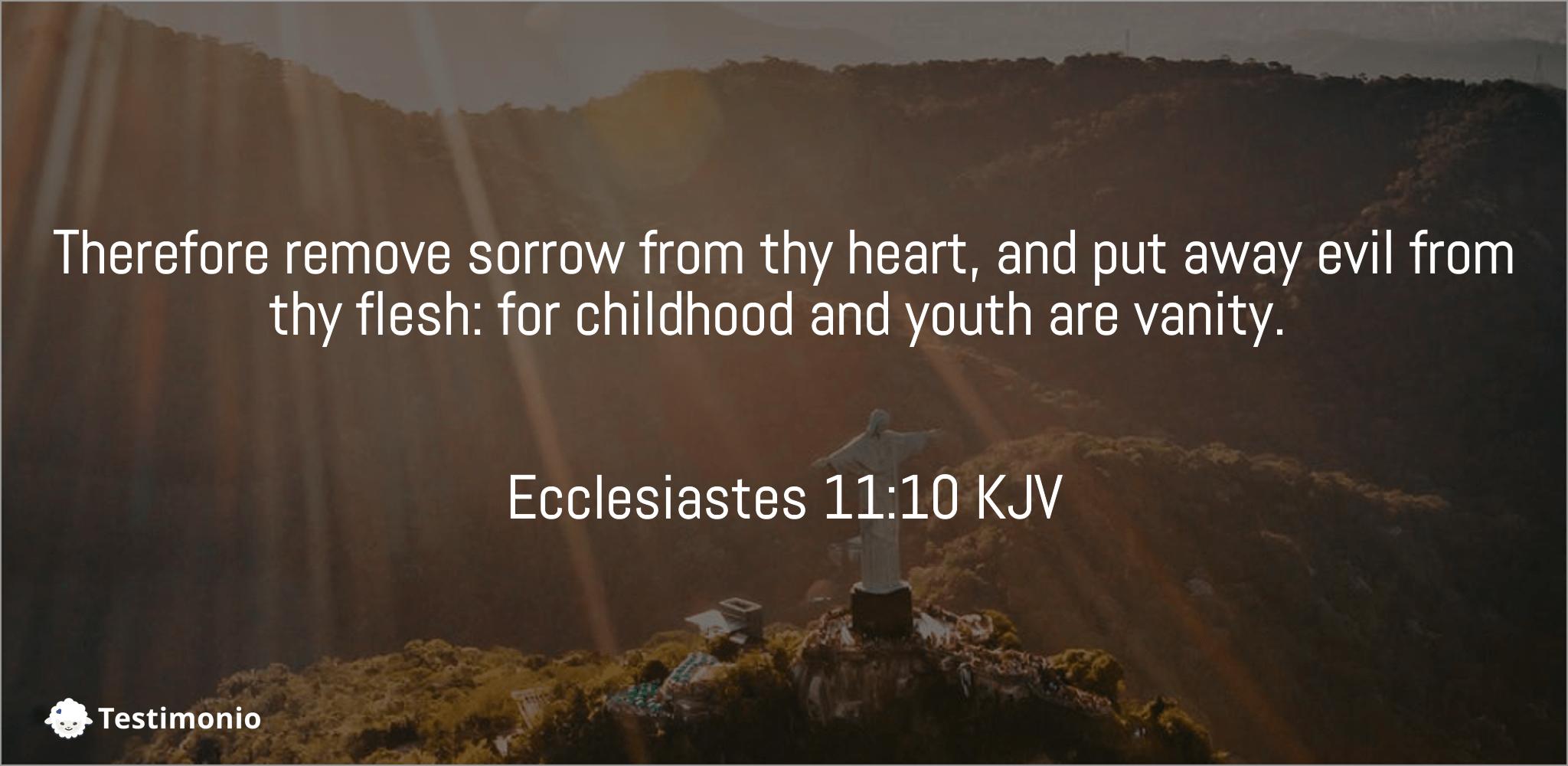 Ecclesiastes 11:10