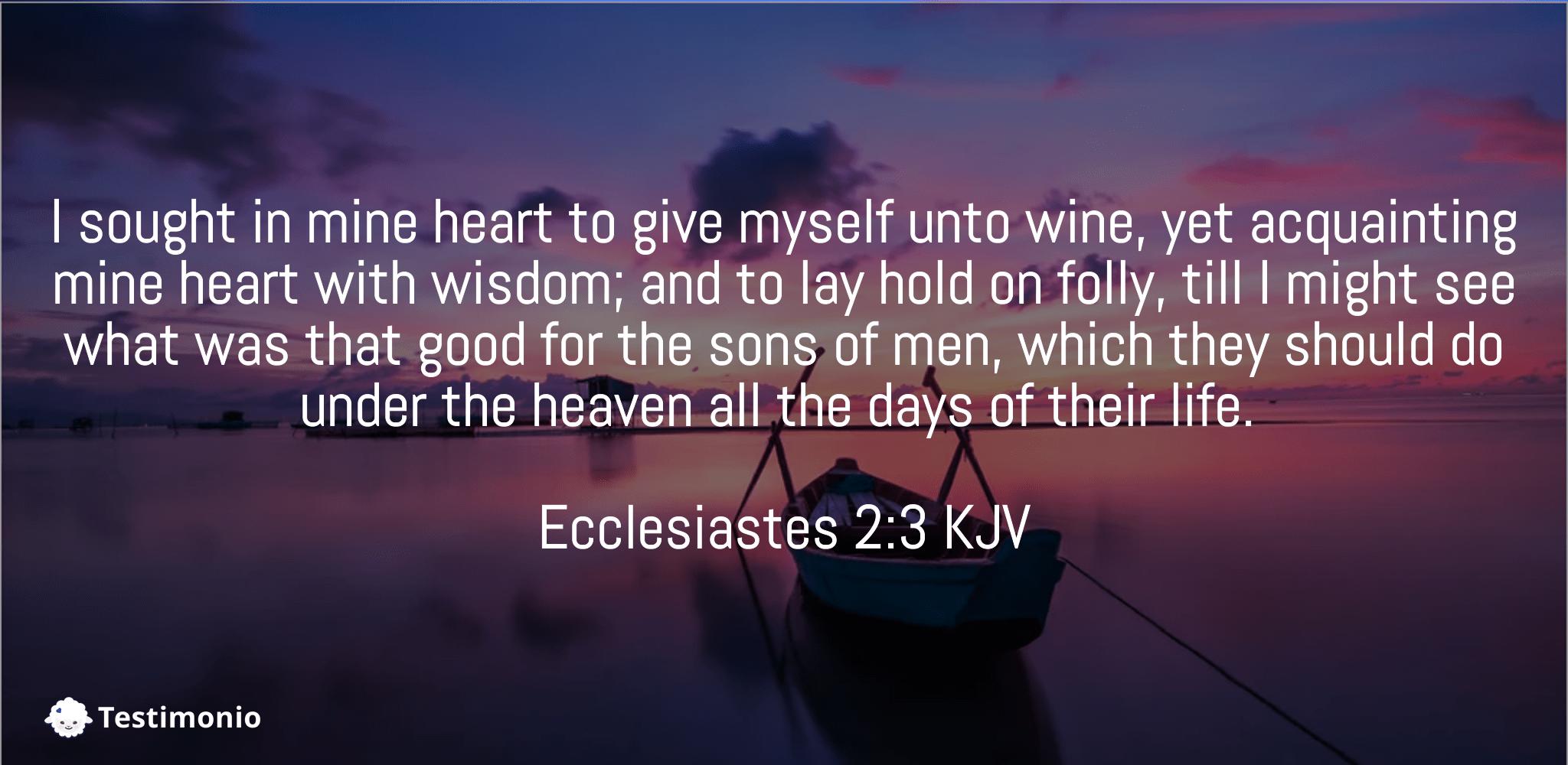 Ecclesiastes 2:3