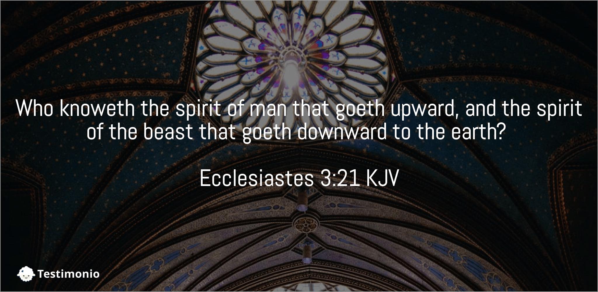 Ecclesiastes 3:21