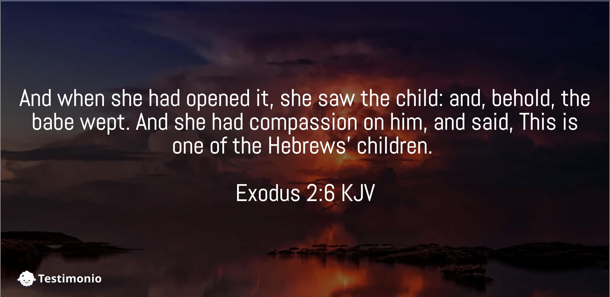 Exodus 2:6