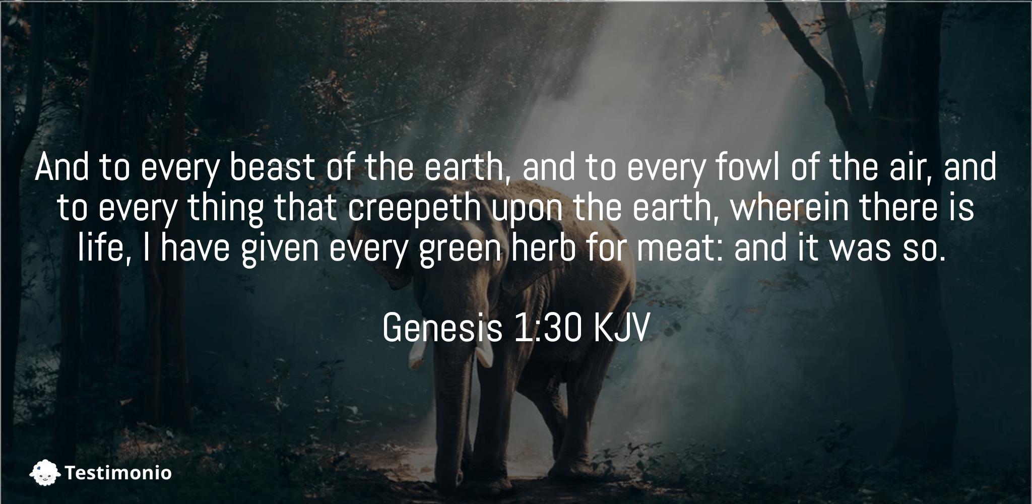 Genesis 1:30
