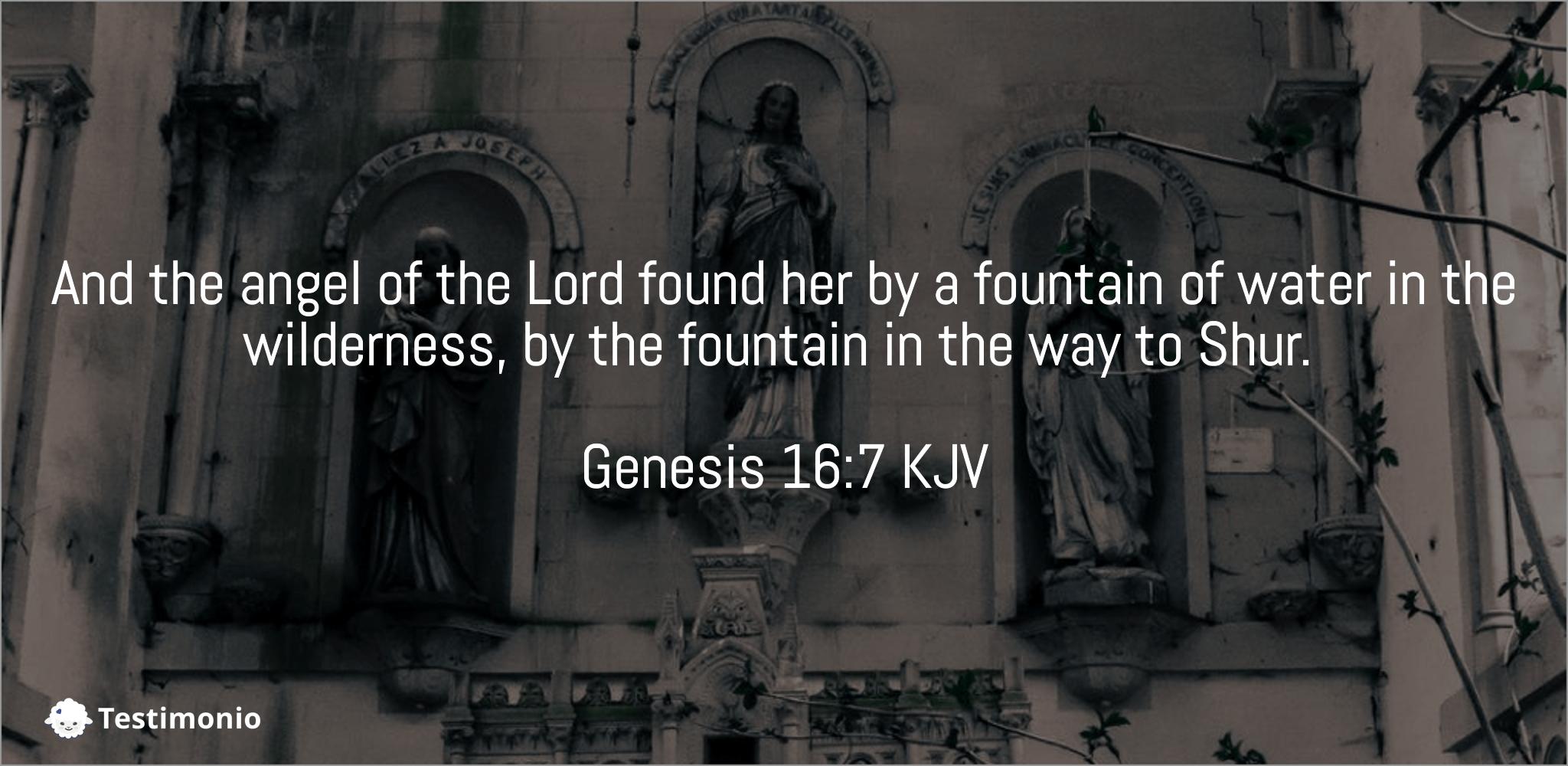 Genesis 16:7