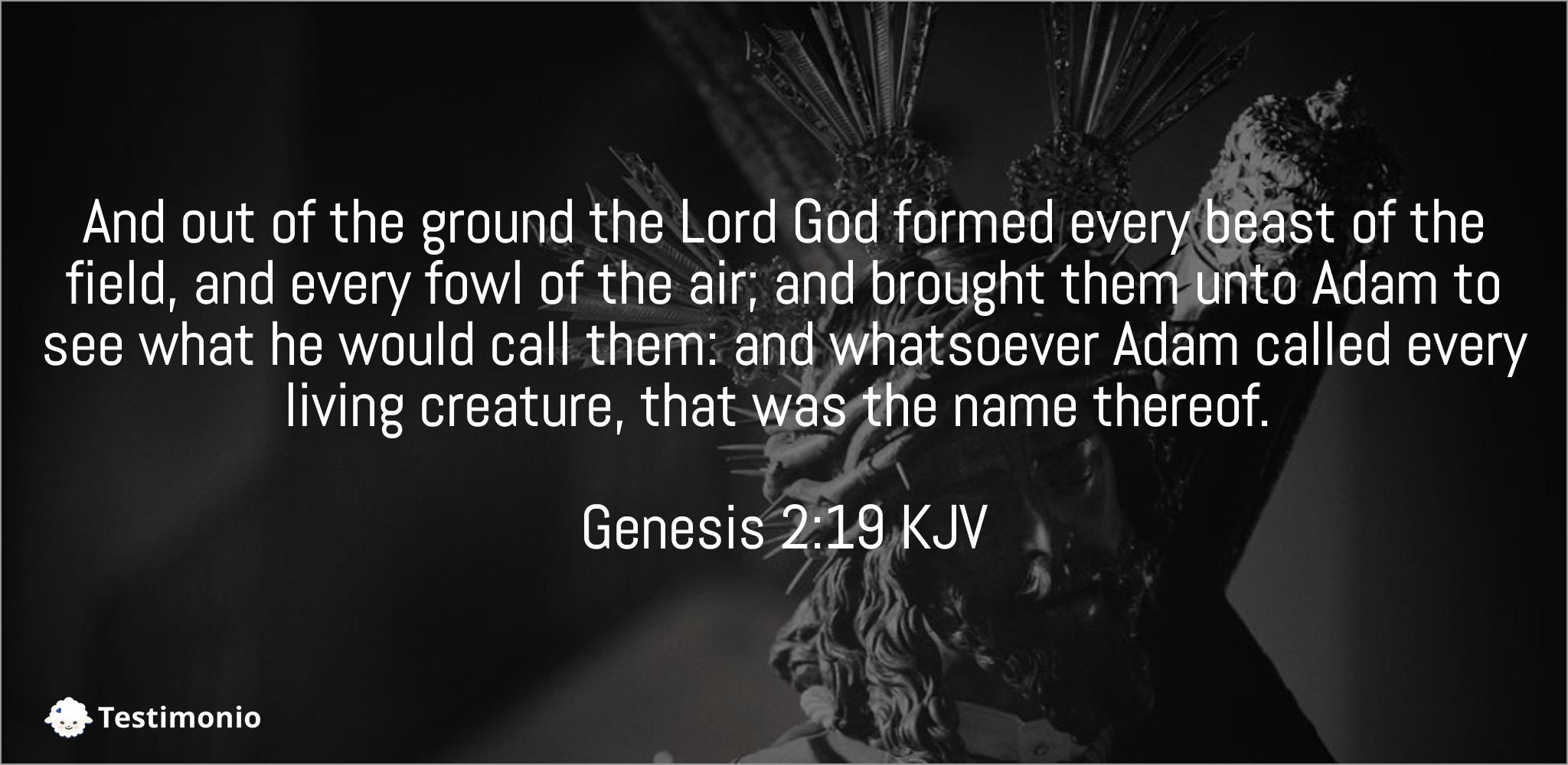 Genesis 2:19