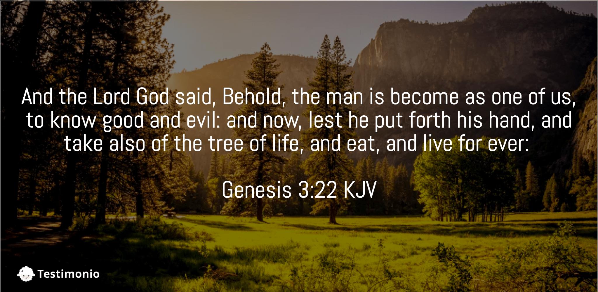 Genesis 3:22