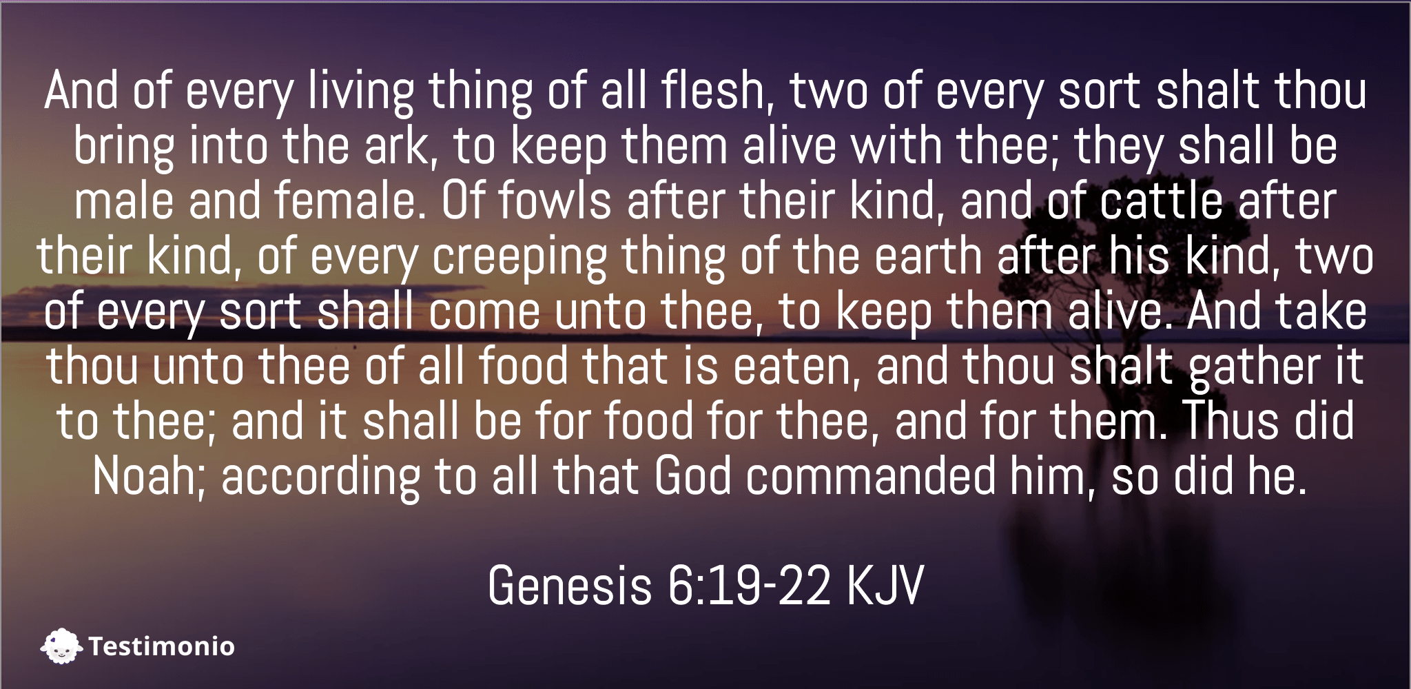 Genesis 6:19-22