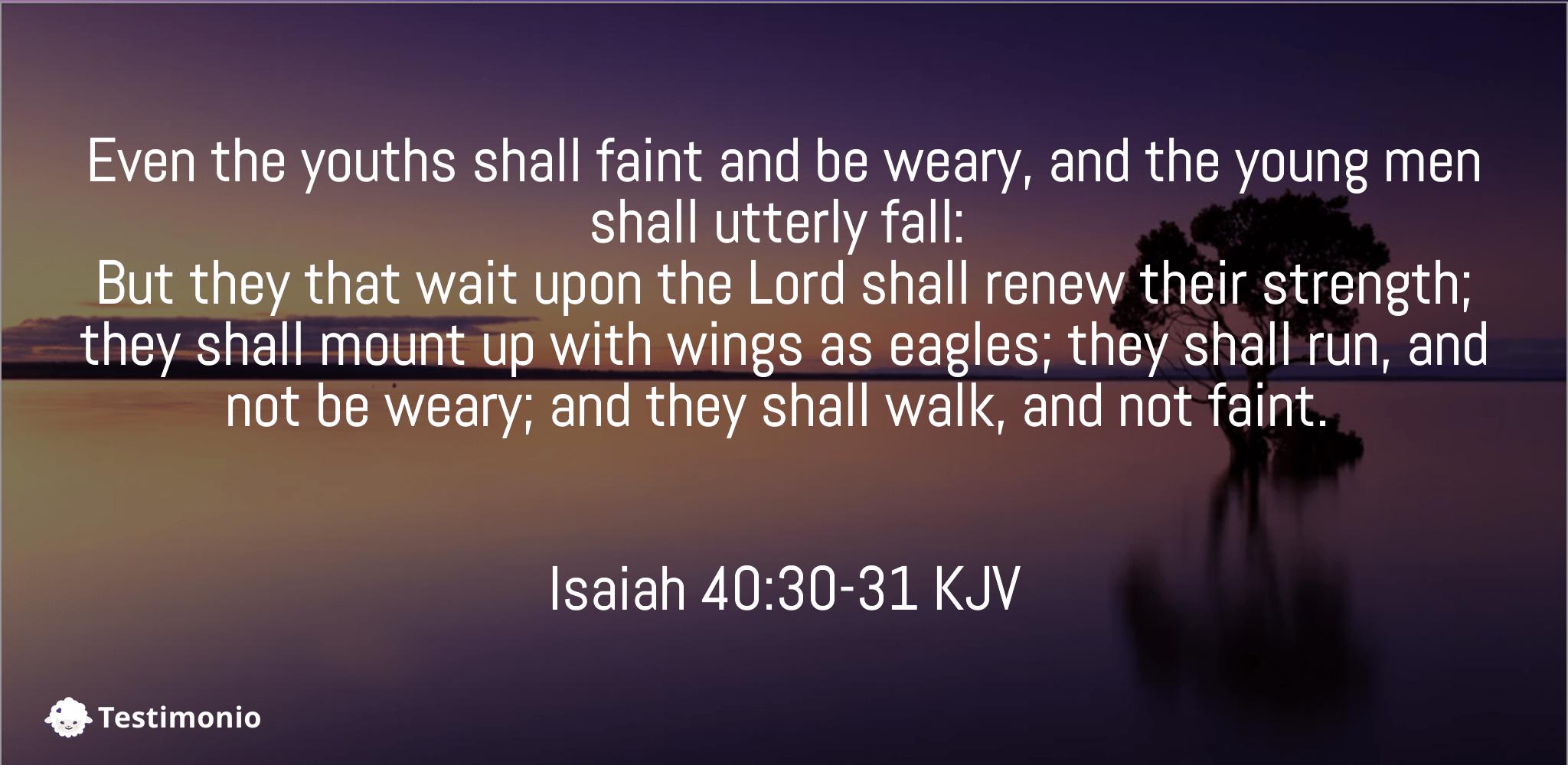 Isaiah 40:30-31