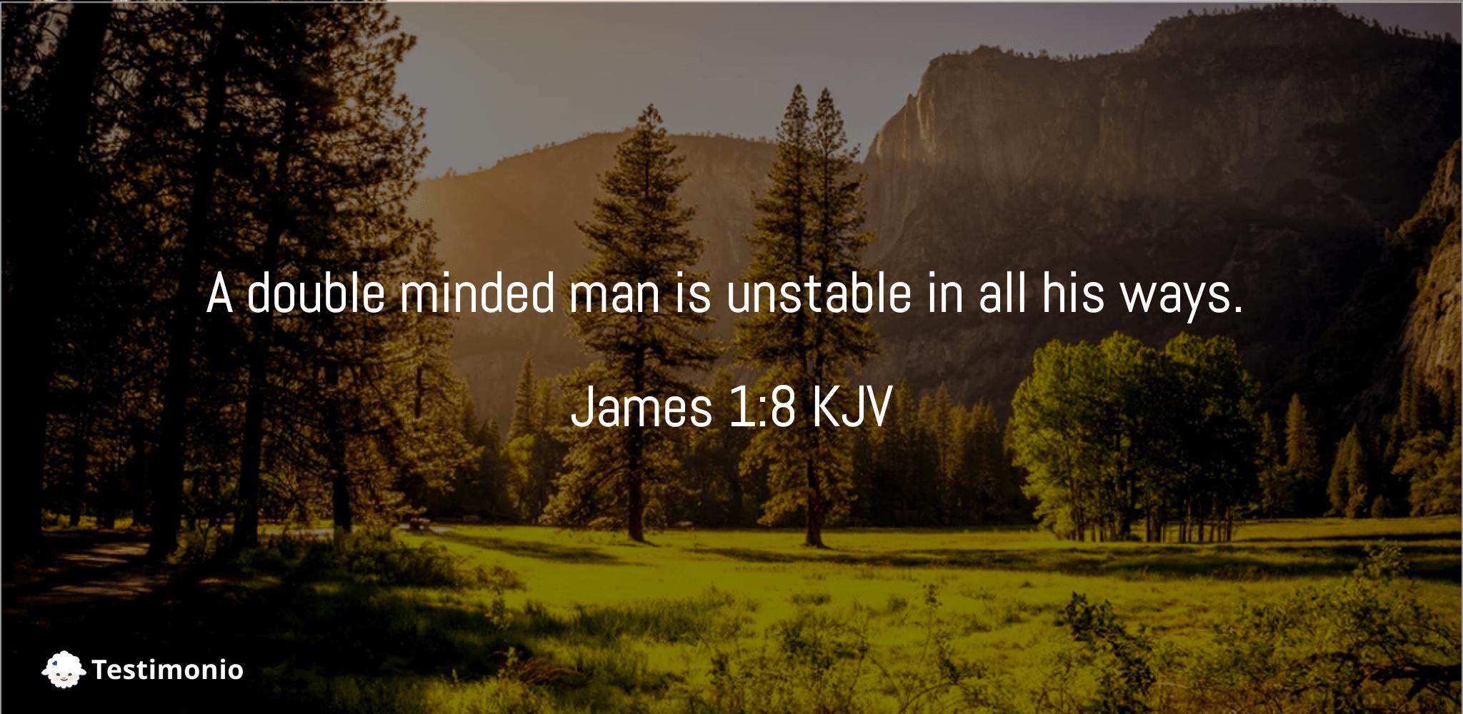 James 1:8
