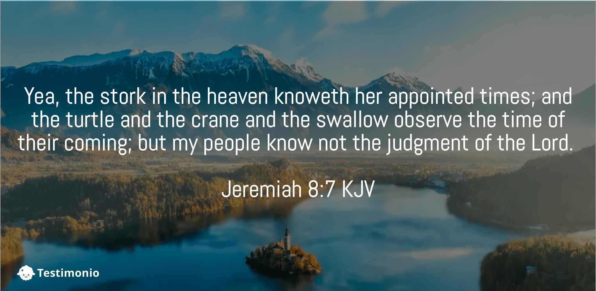 Jeremiah 8:7