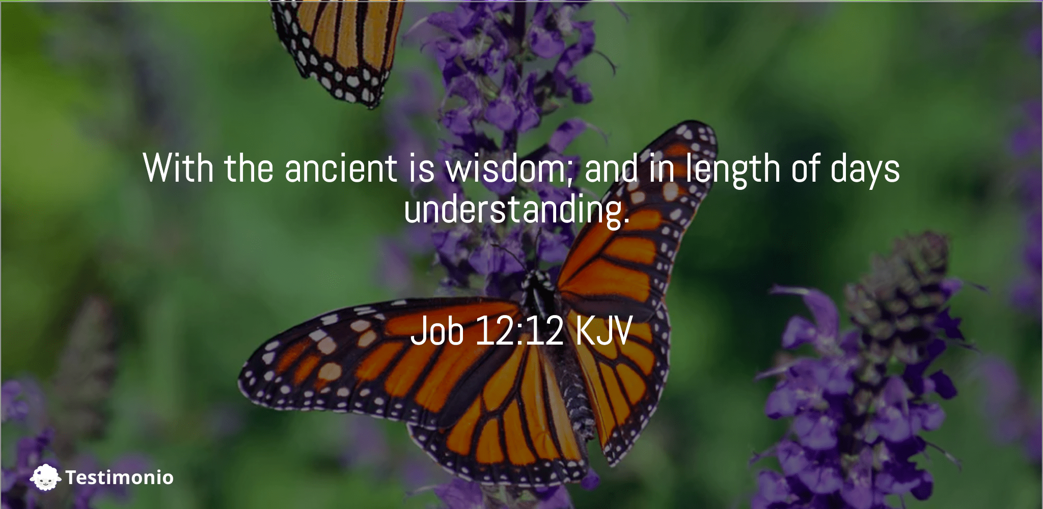 Job 12:12