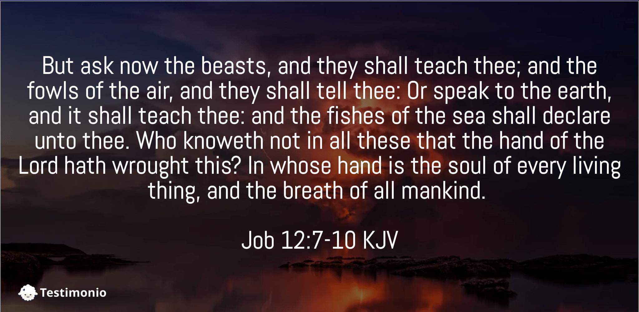 Job 12:7-10