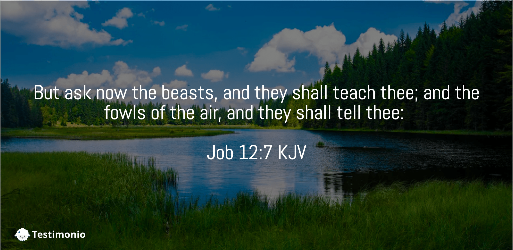 Job 12:7