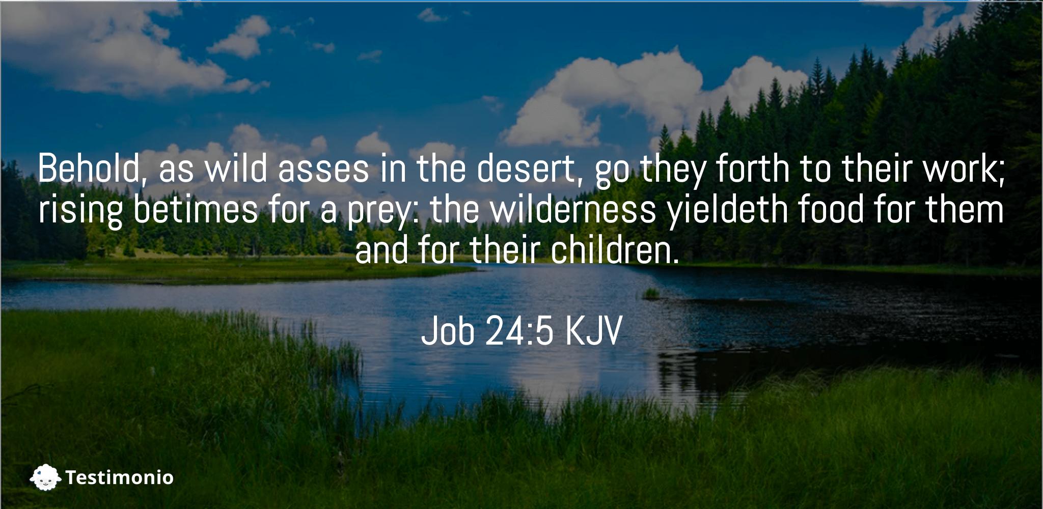 Job 24:5