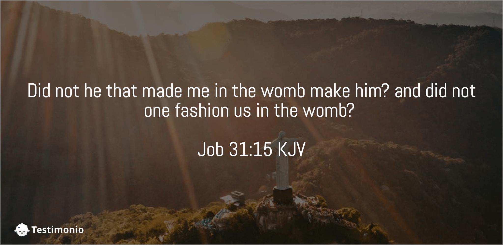 Job 31:15