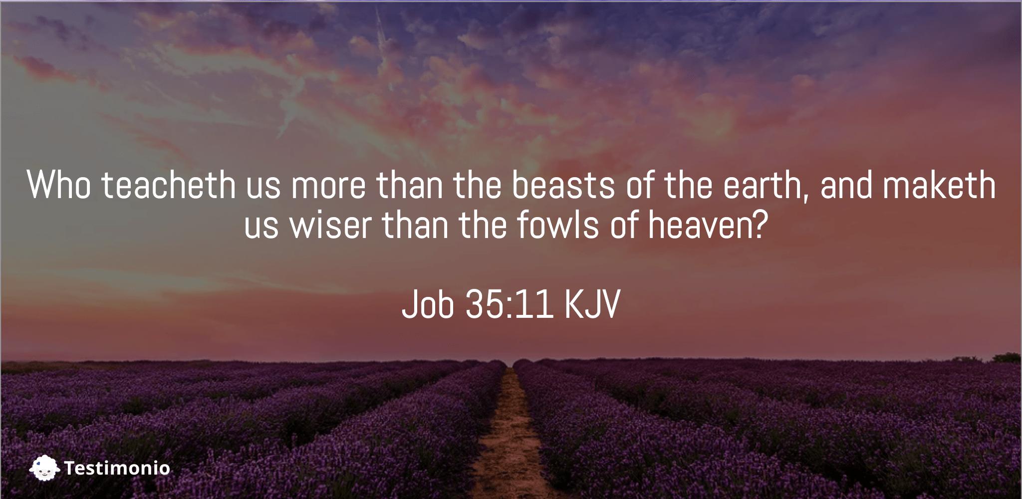 Job 35:11