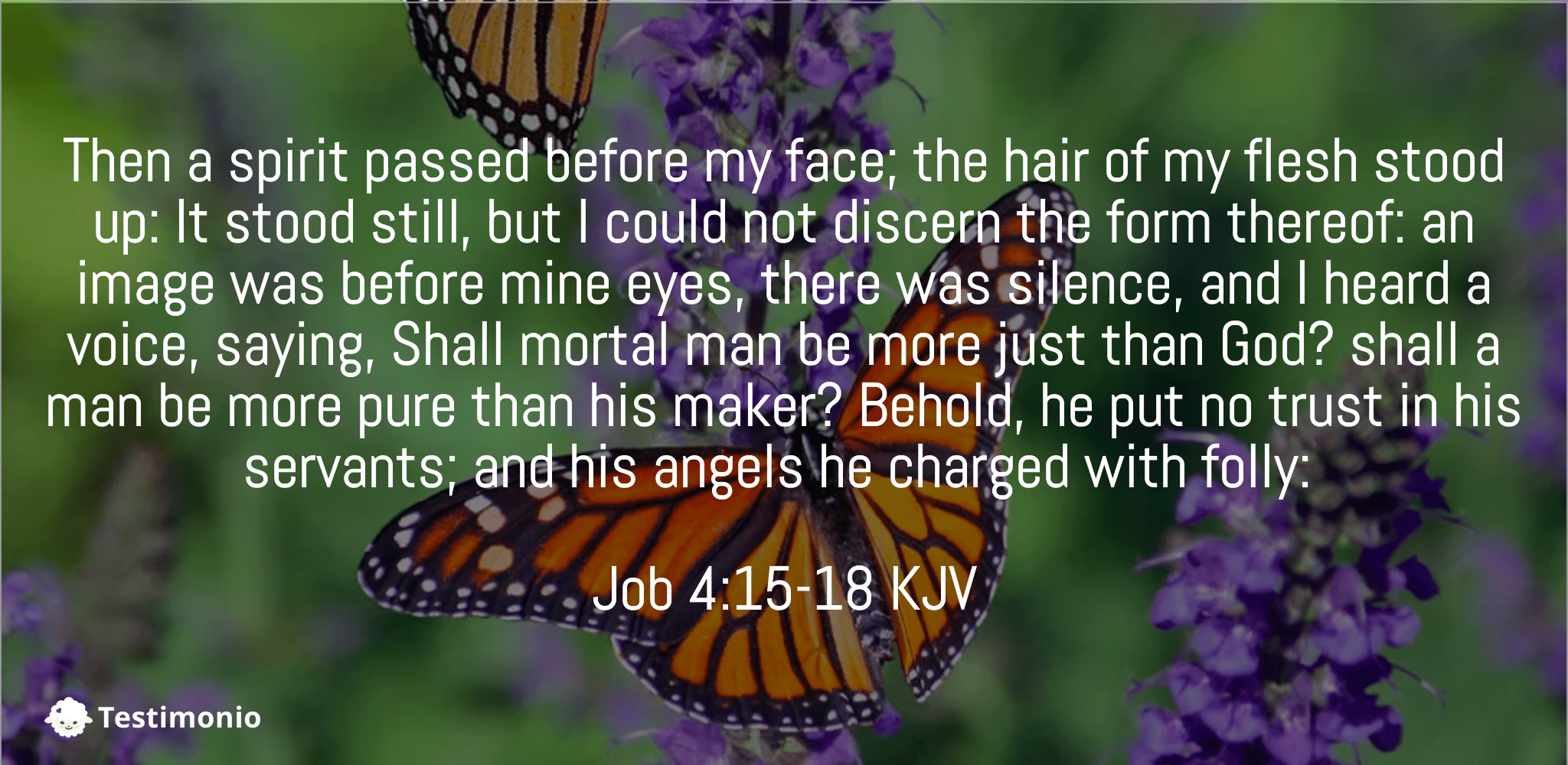 Job 4:15-18