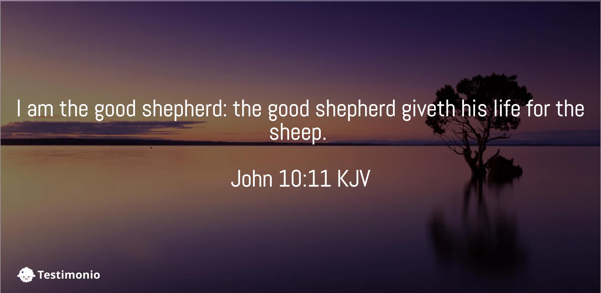 John 10:11