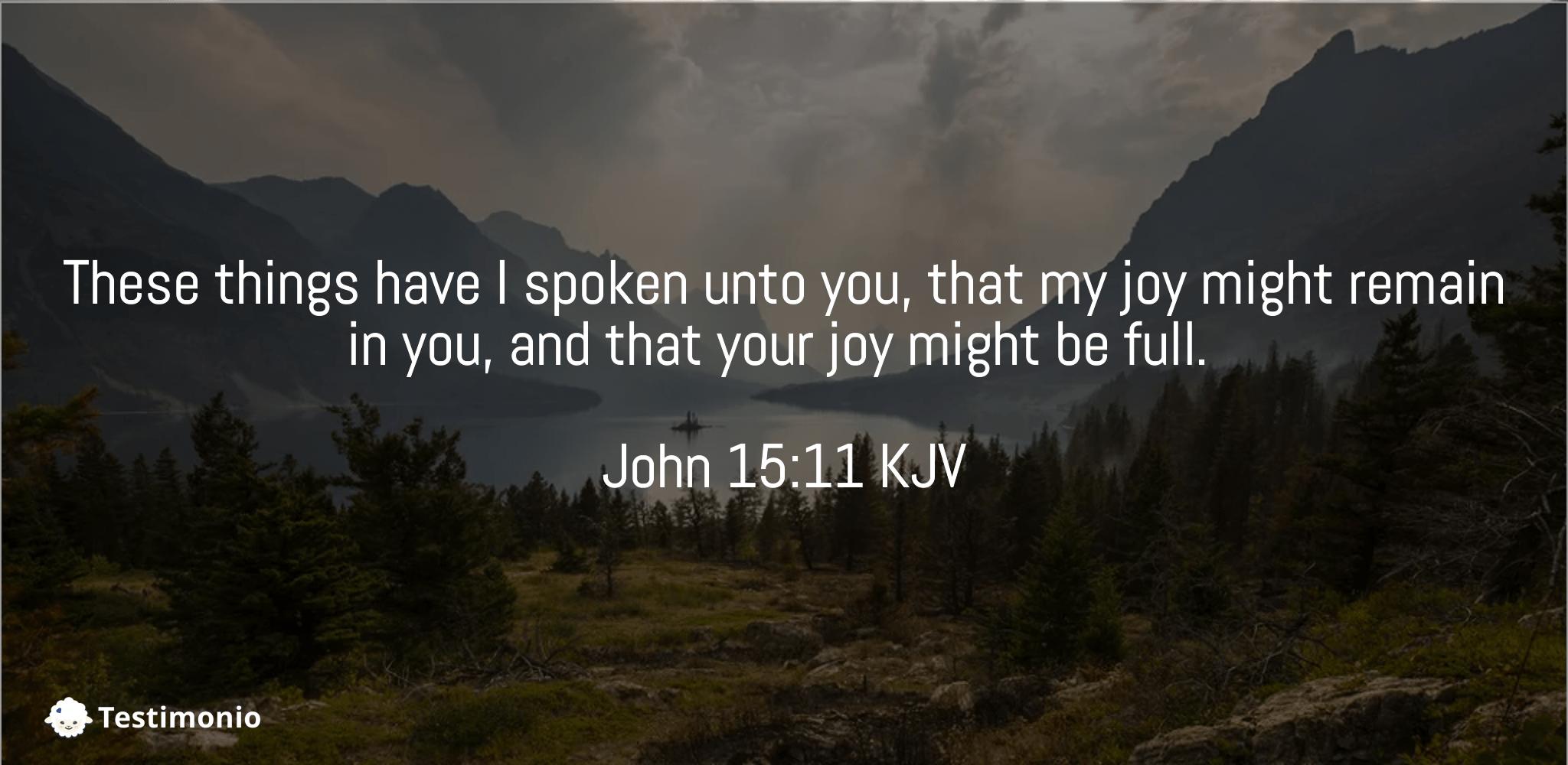John 15:11