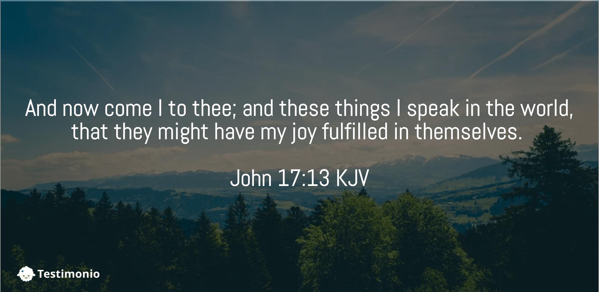 John 17:13