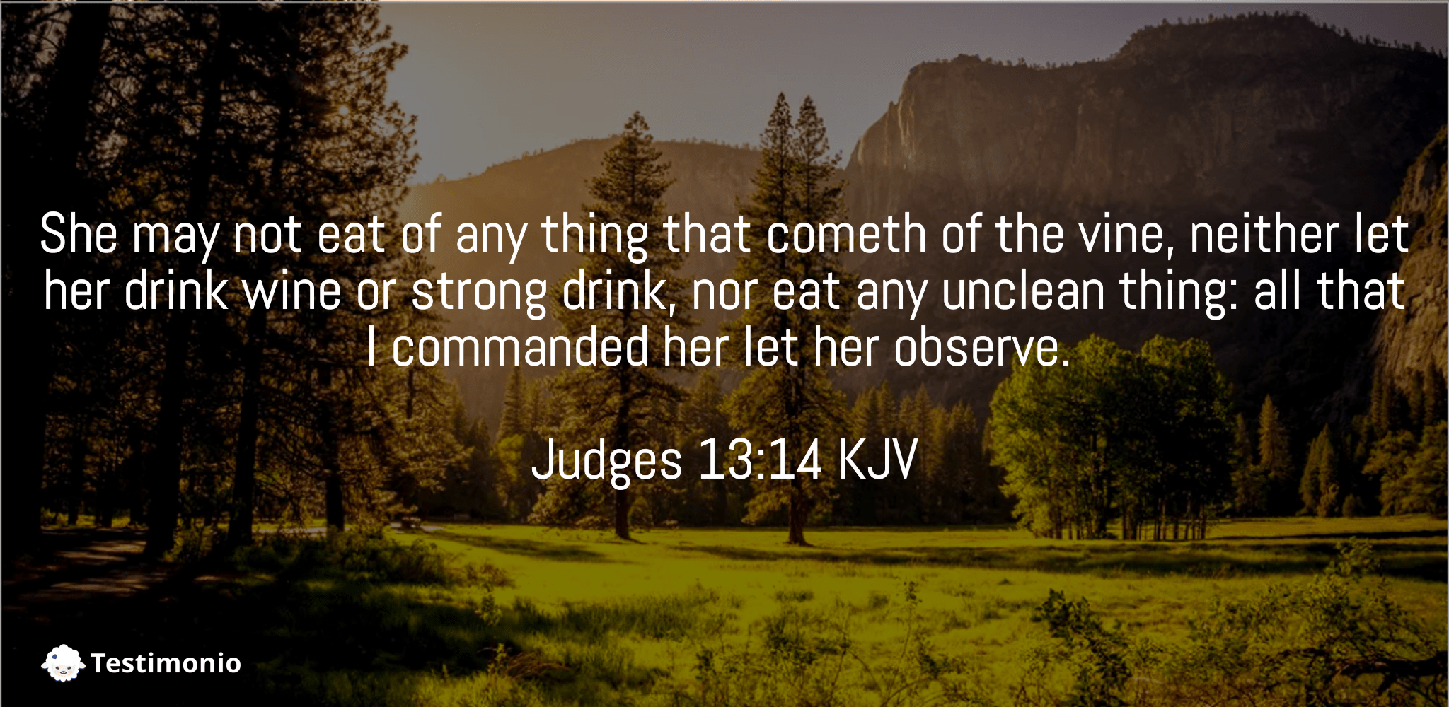 Judges 13:14