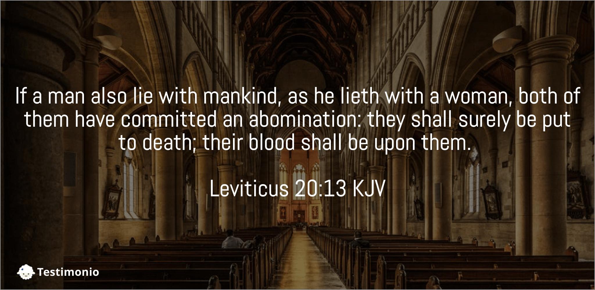 Leviticus 20:13