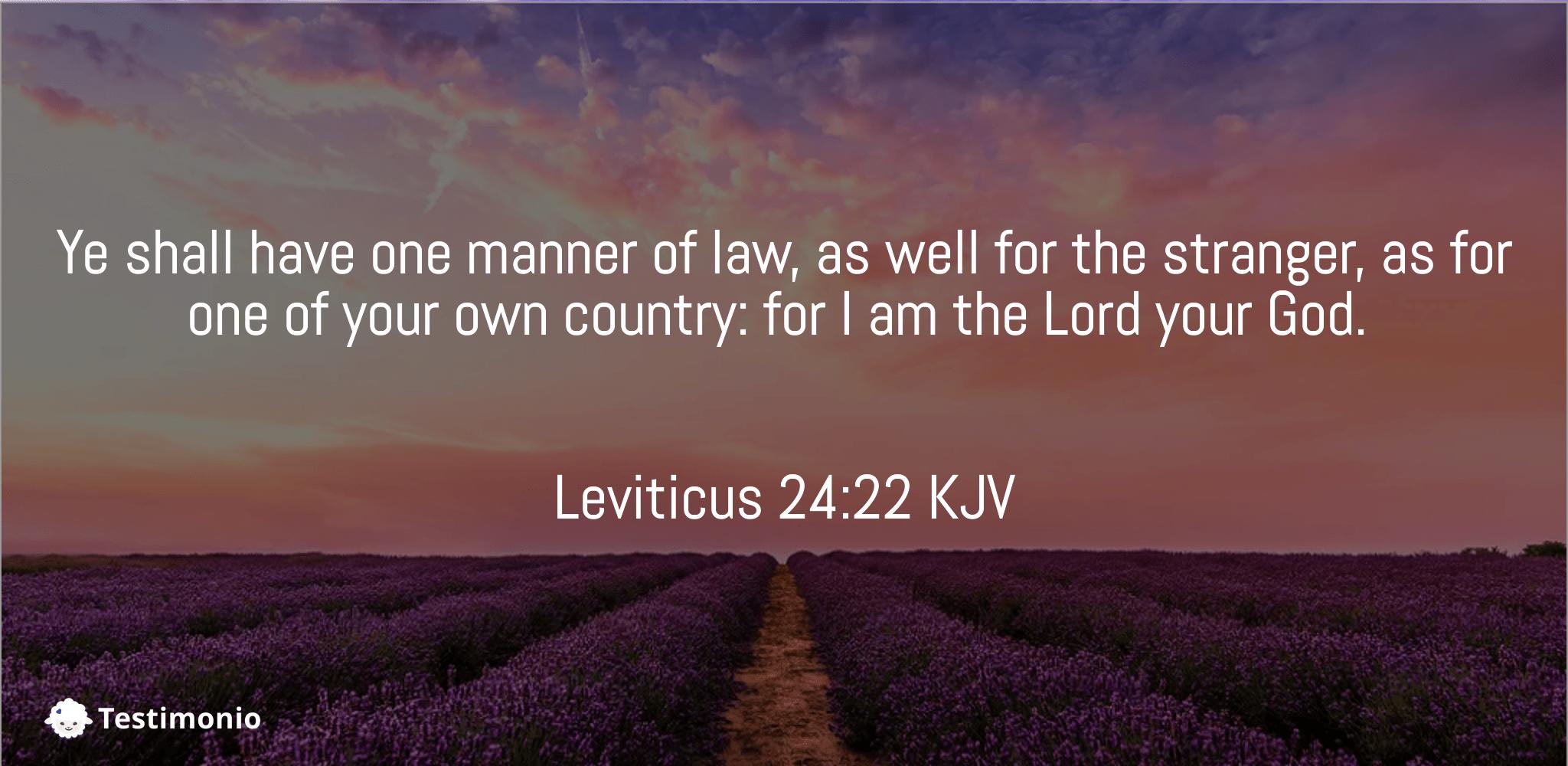 Leviticus 24:22