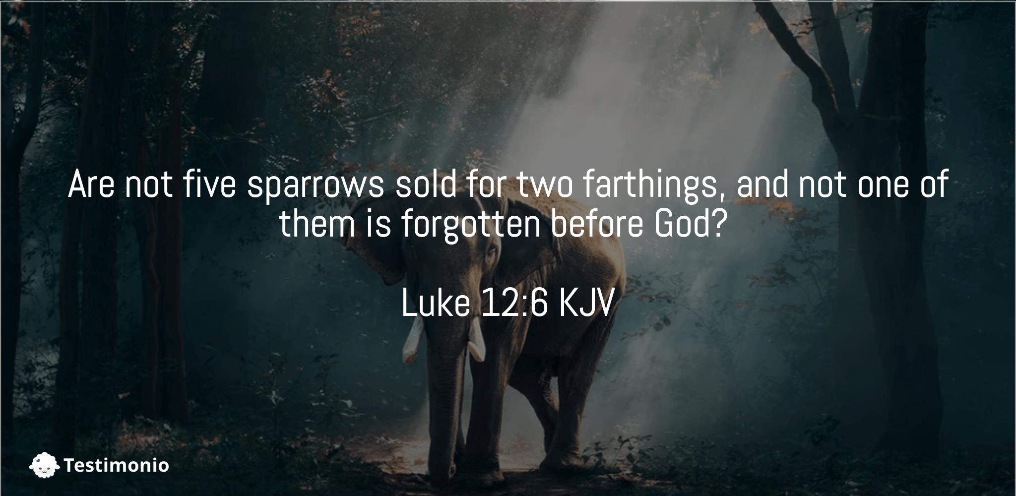 Luke 12:6