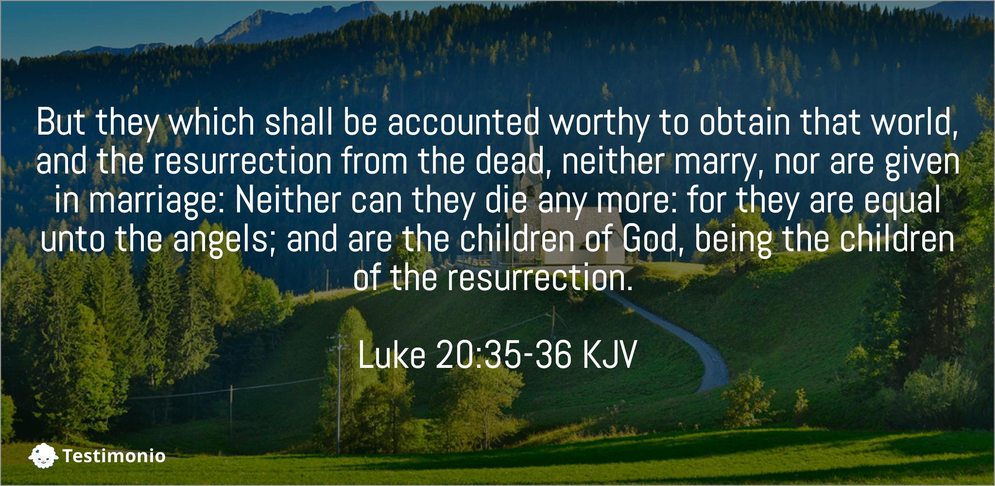 Luke 20:35-36