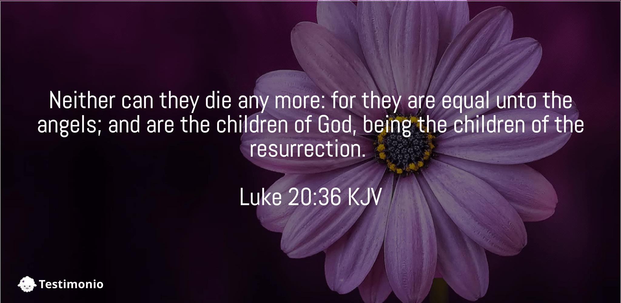 Luke 20:36