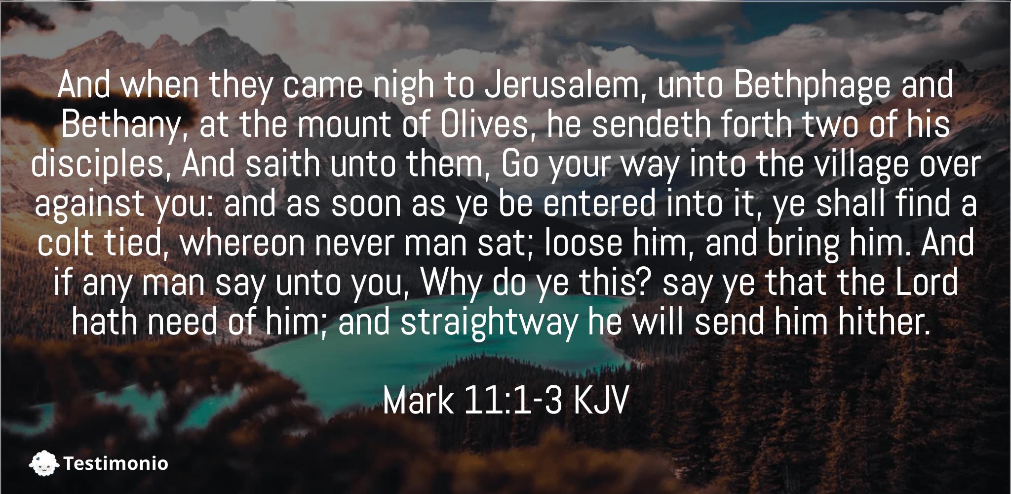 Mark 11:1-3