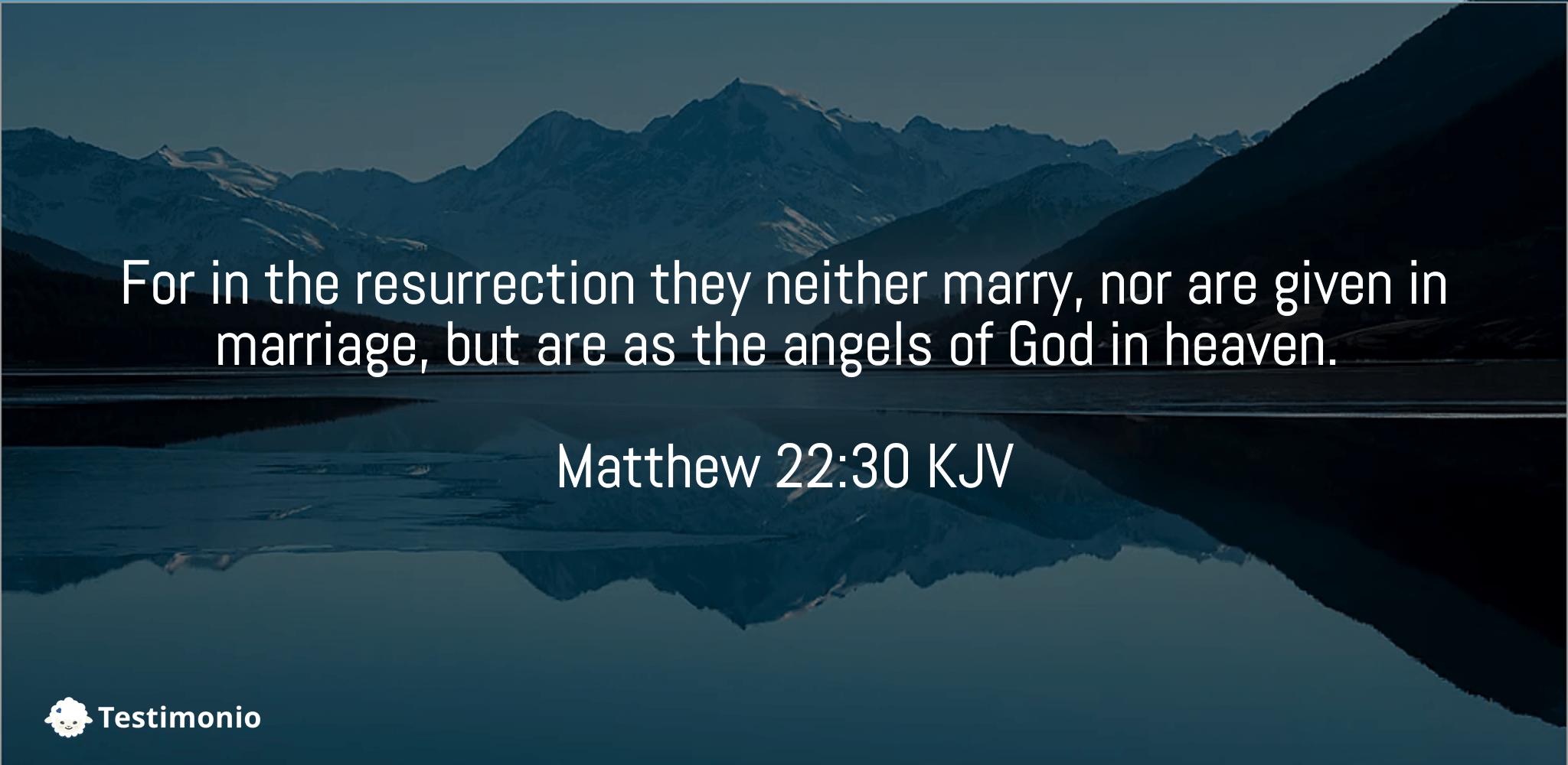 Matthew 22:30
