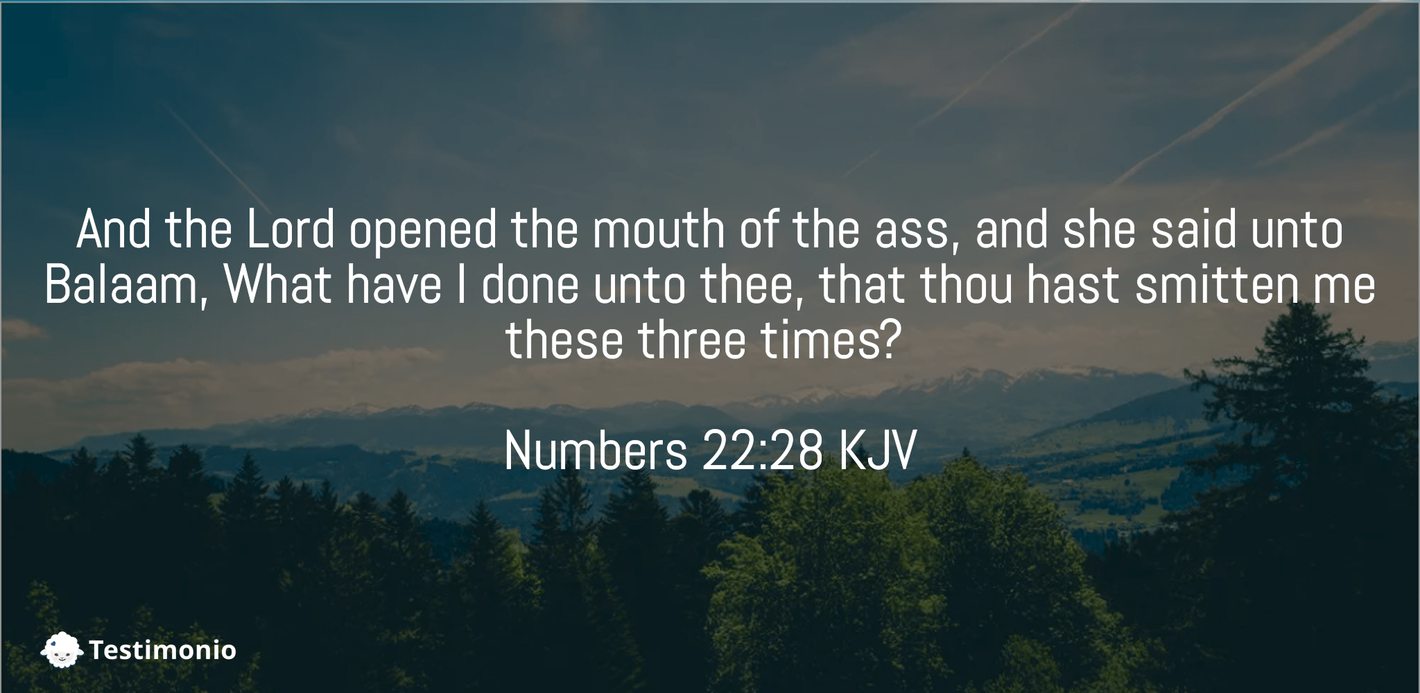 Numbers 22:28