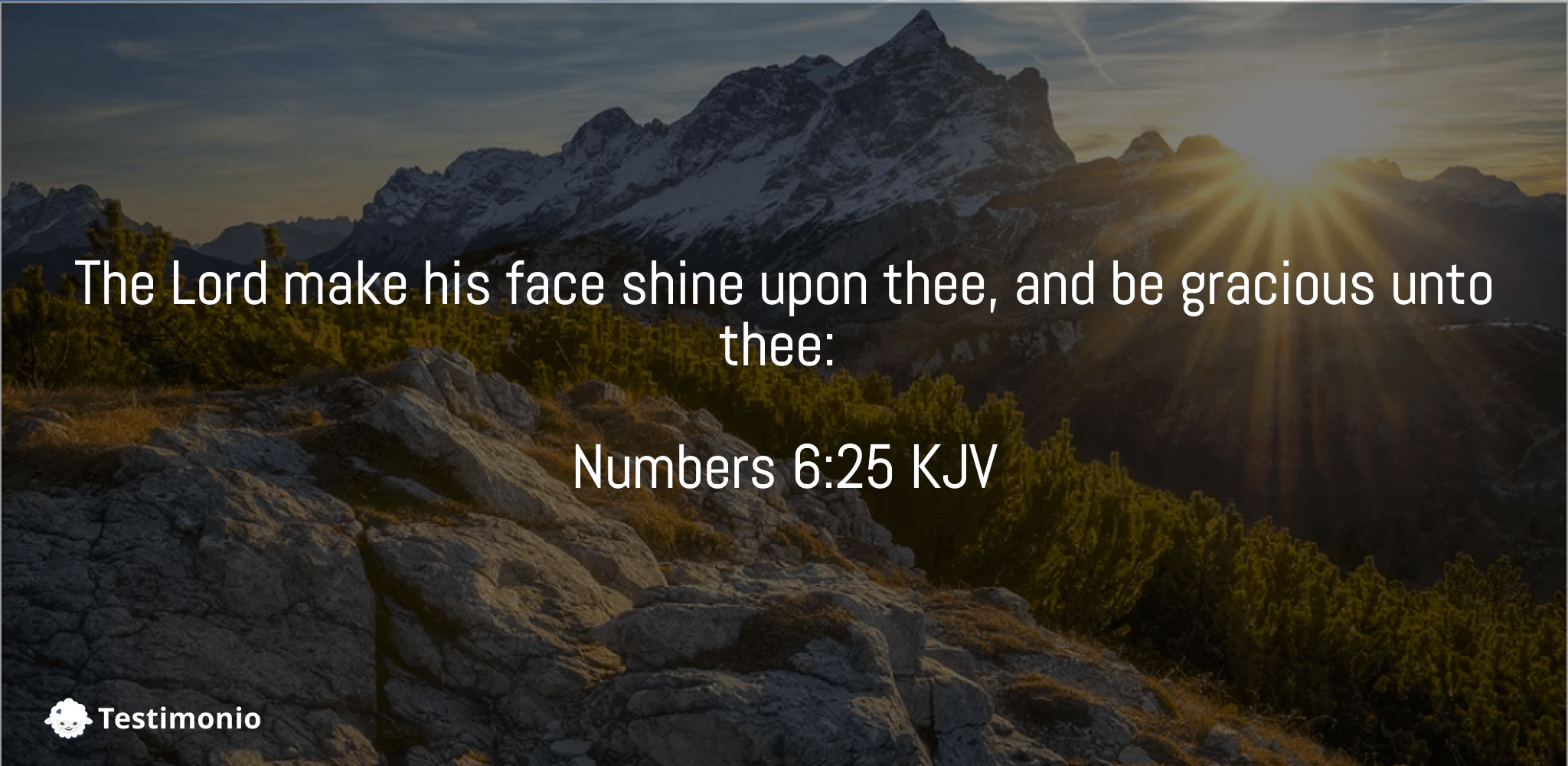 Numbers 6:25