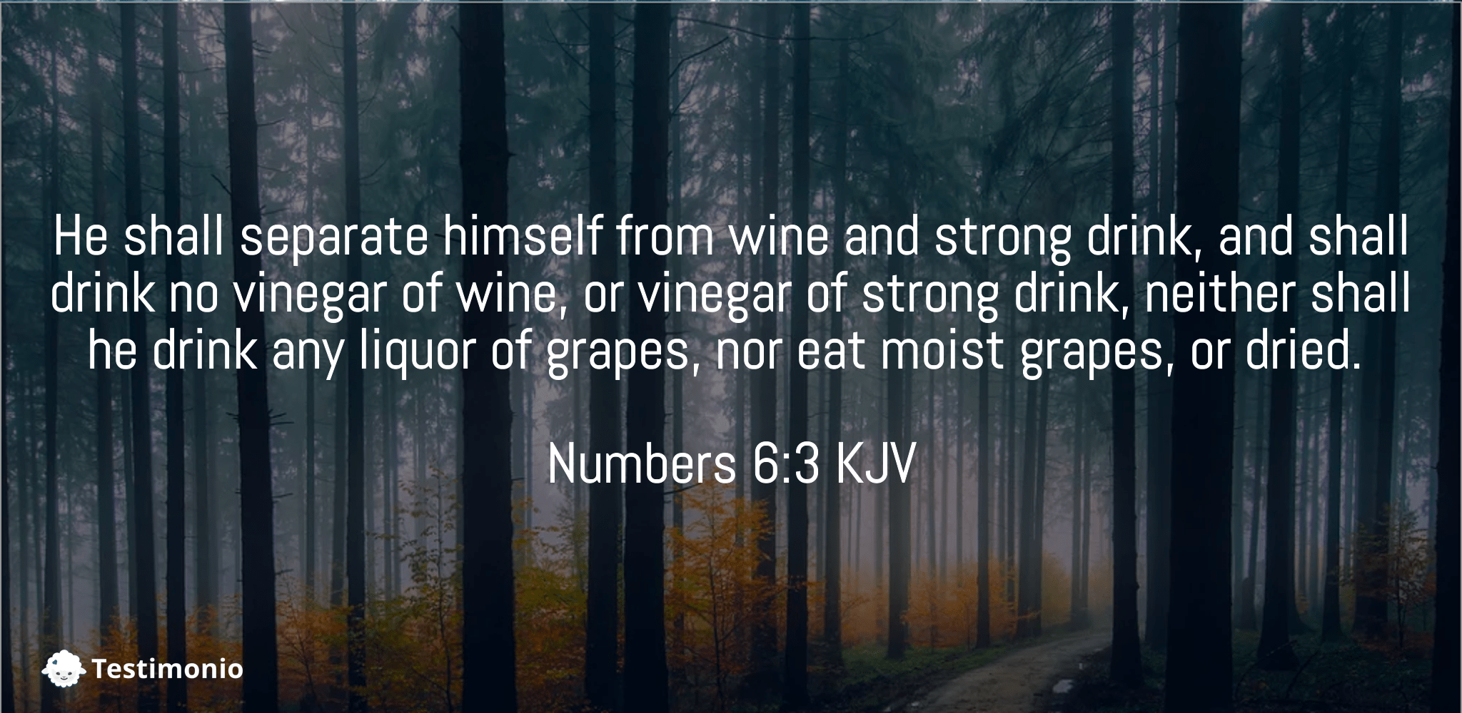 Numbers 6:3