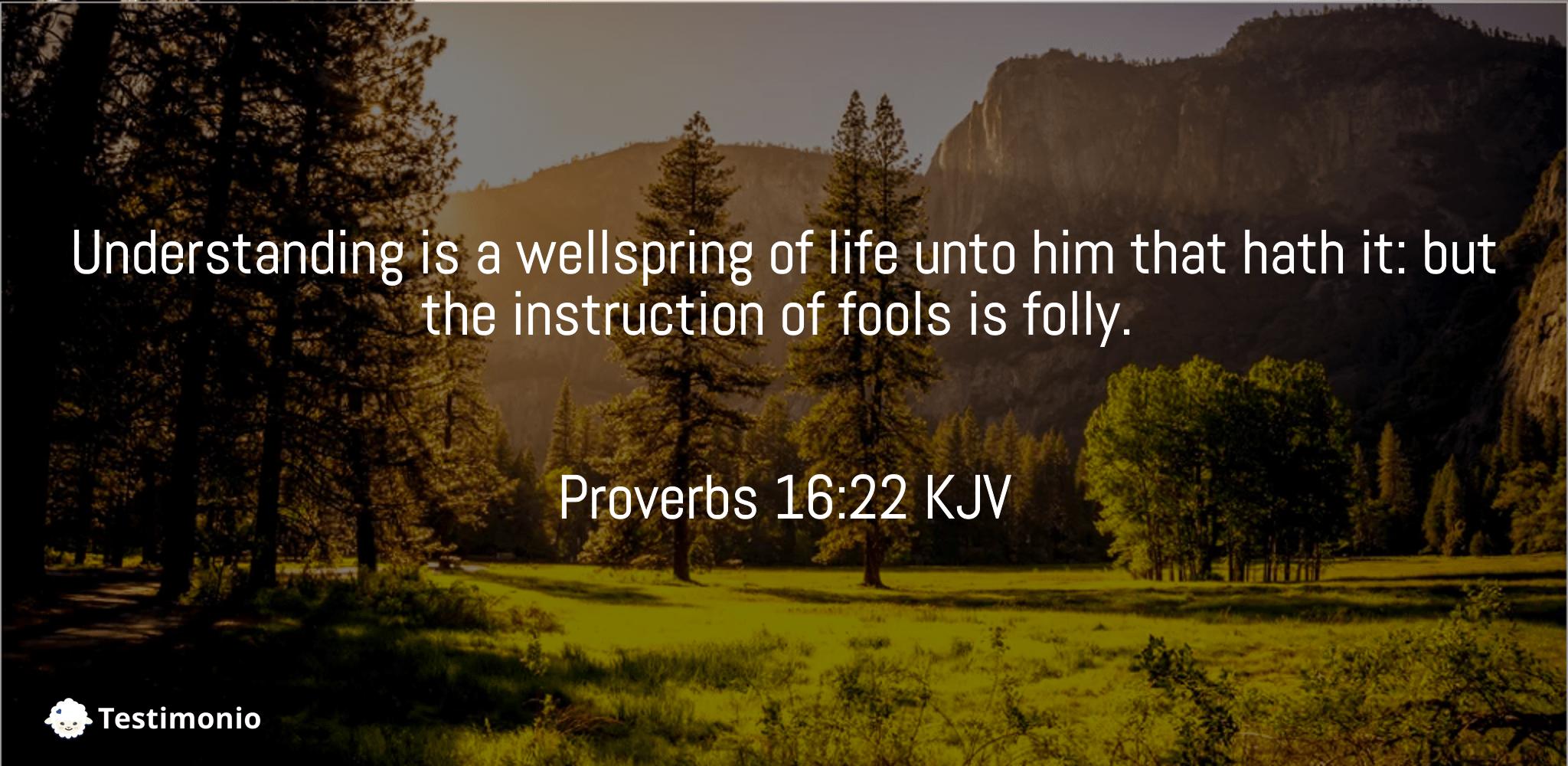 Proverbs 16:22