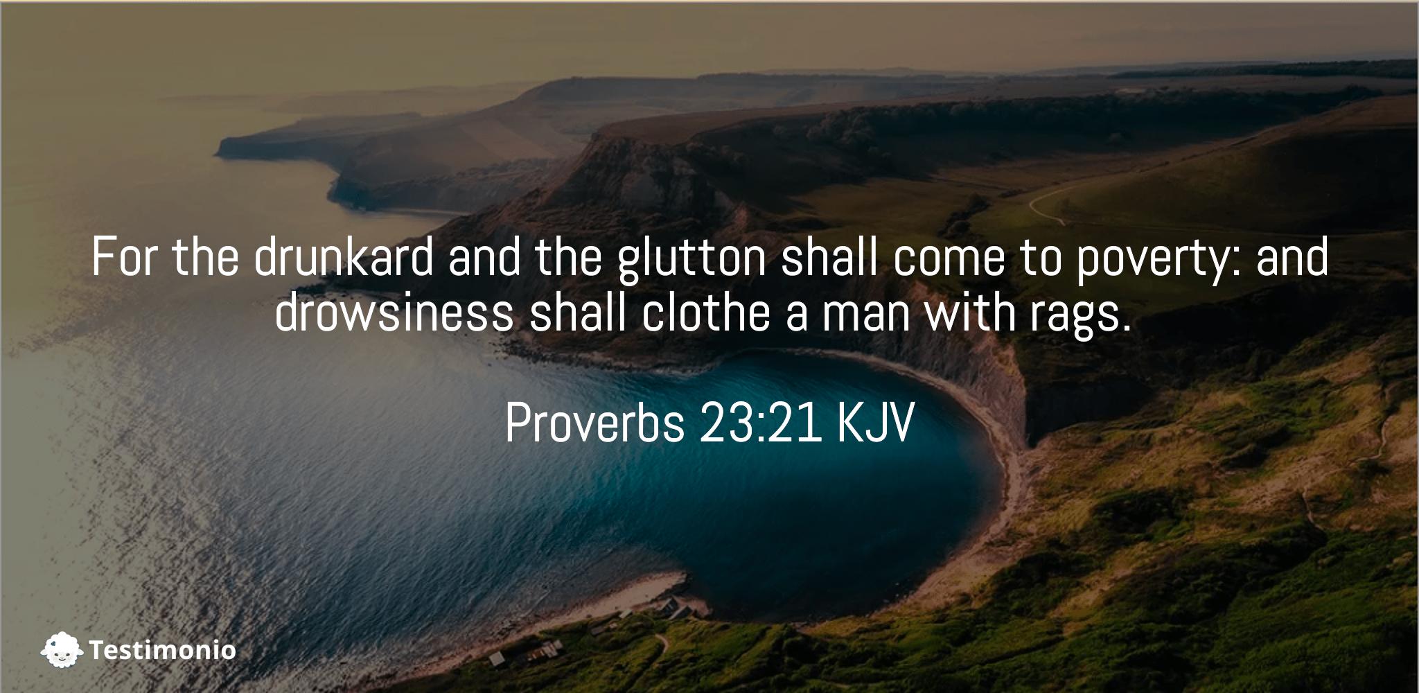 Proverbs 23:21