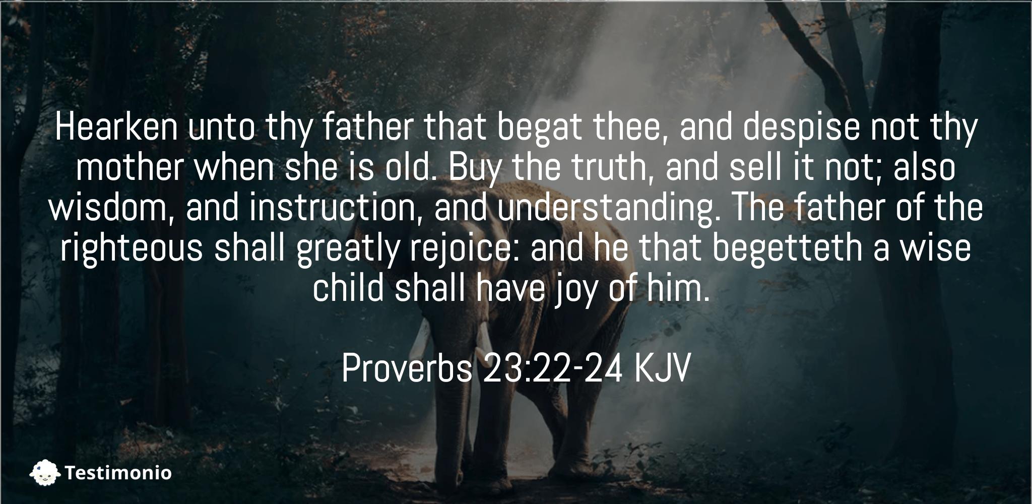 Proverbs 23:22-24