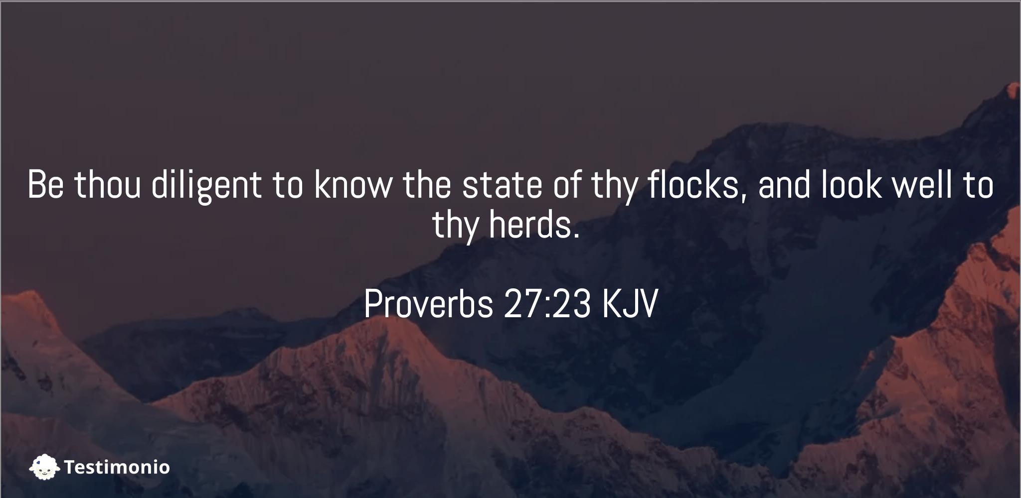 Proverbs 27:23