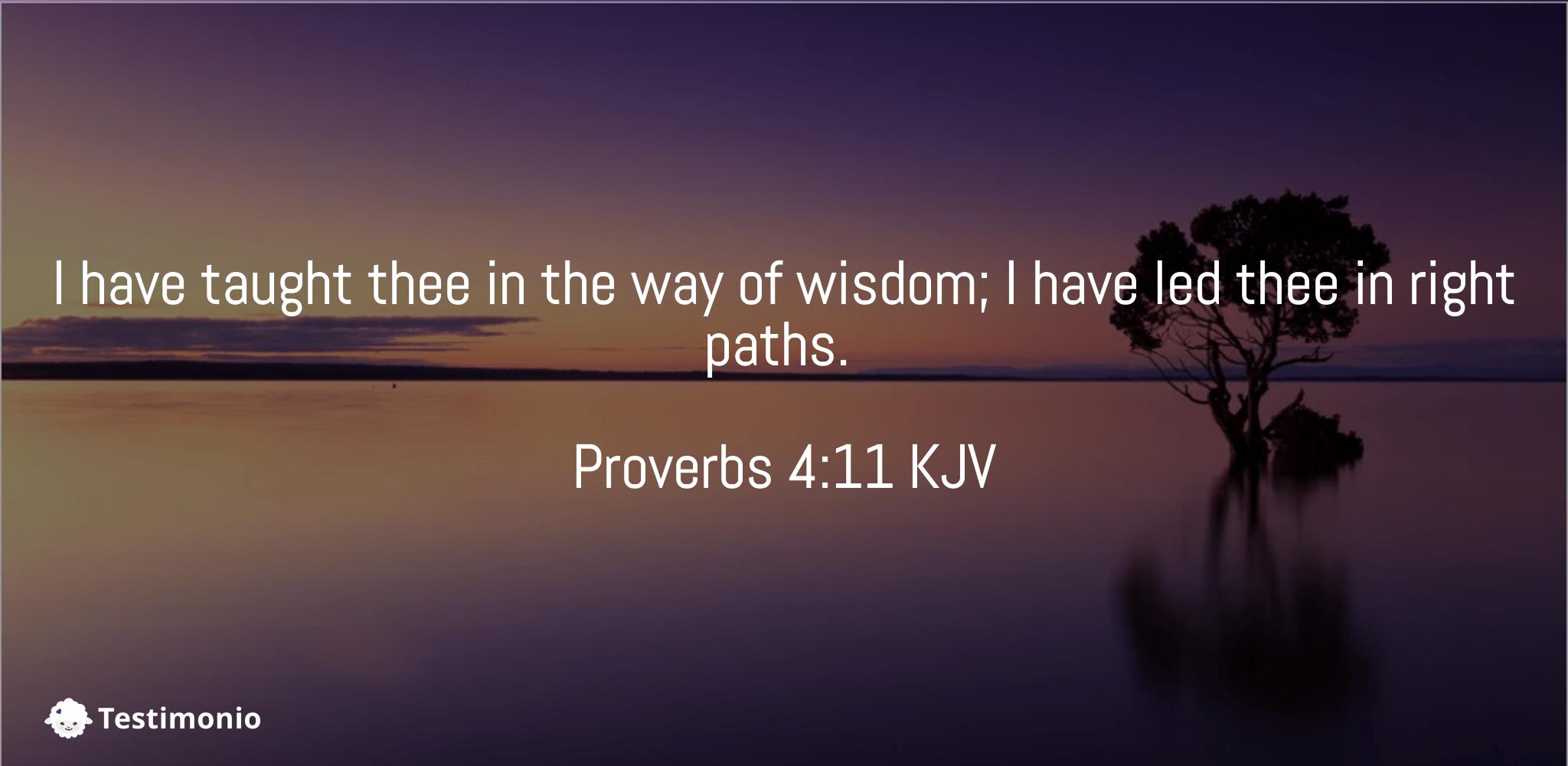 Proverbs 4:11
