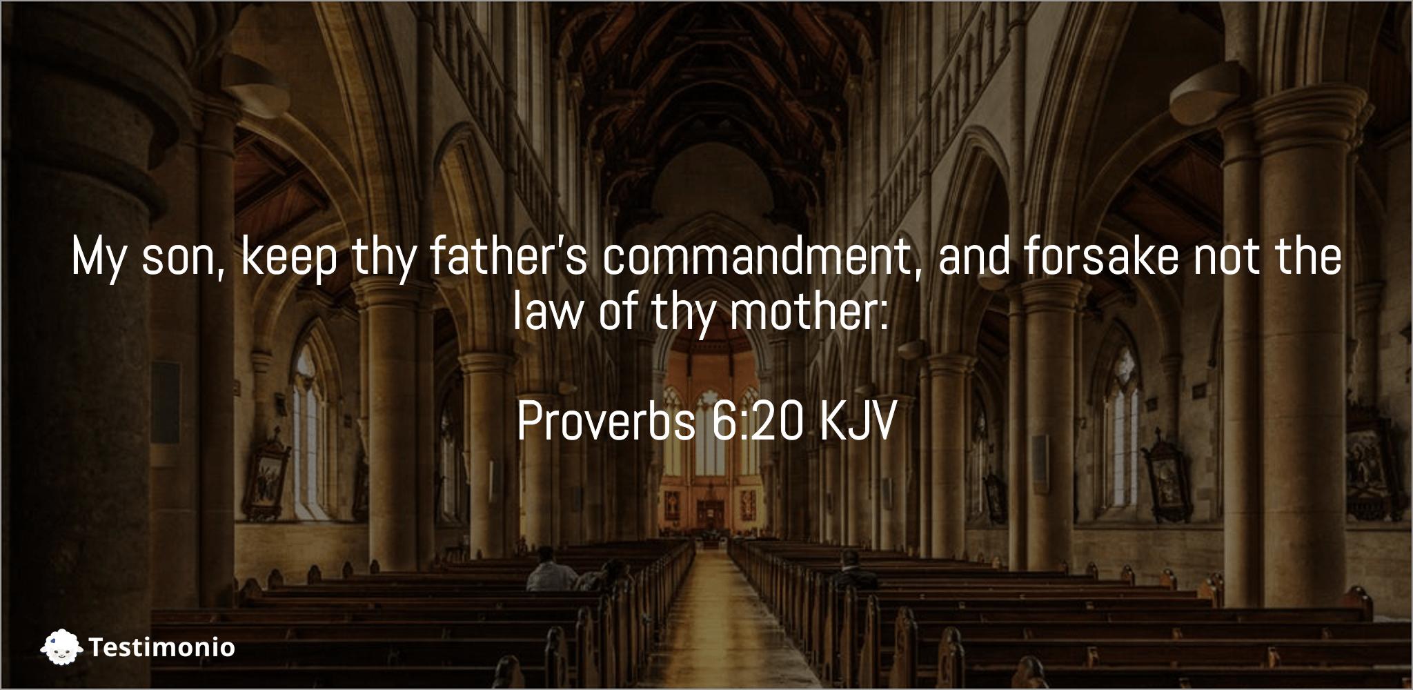 Proverbs 6:20