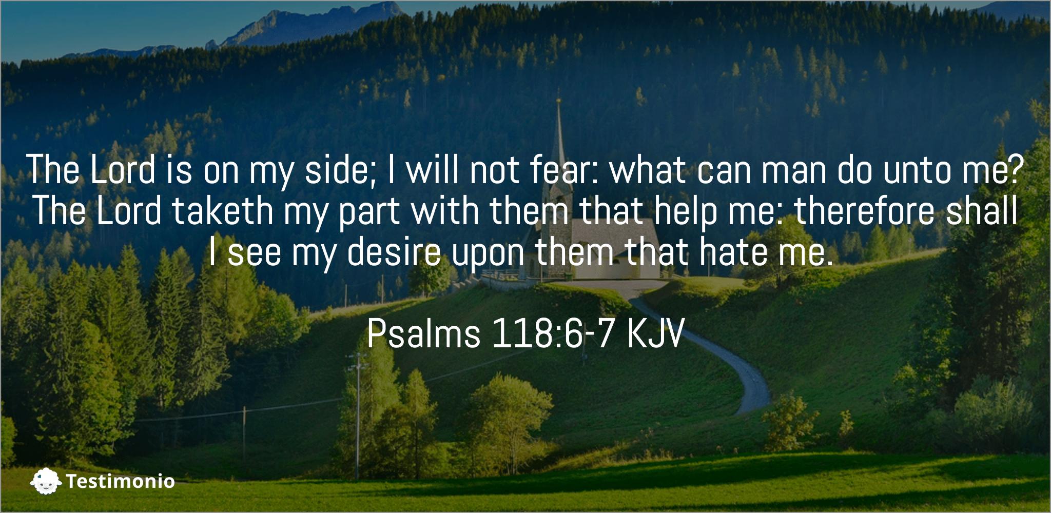Psalms 118:6-7