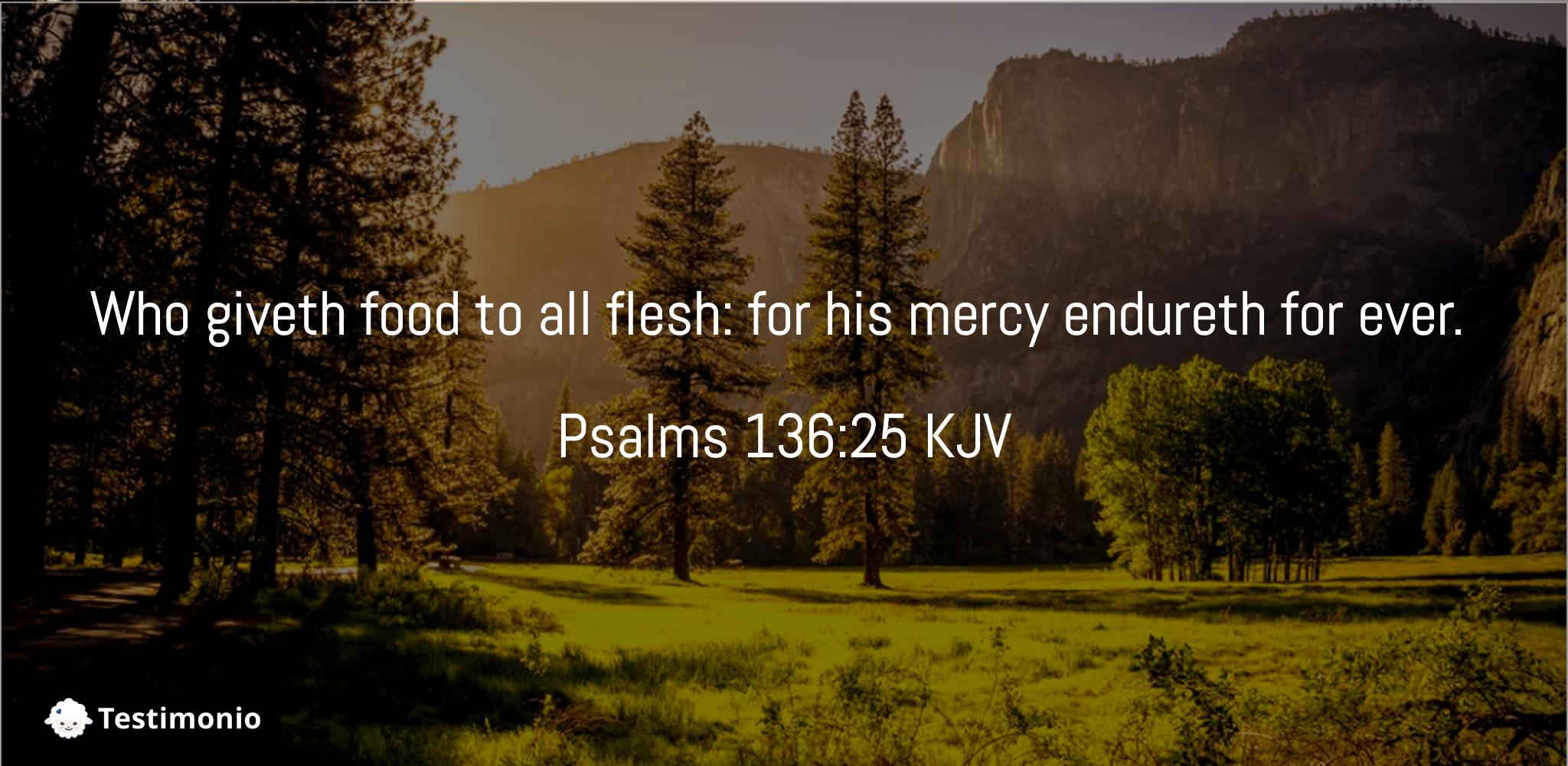 Psalms 136:25