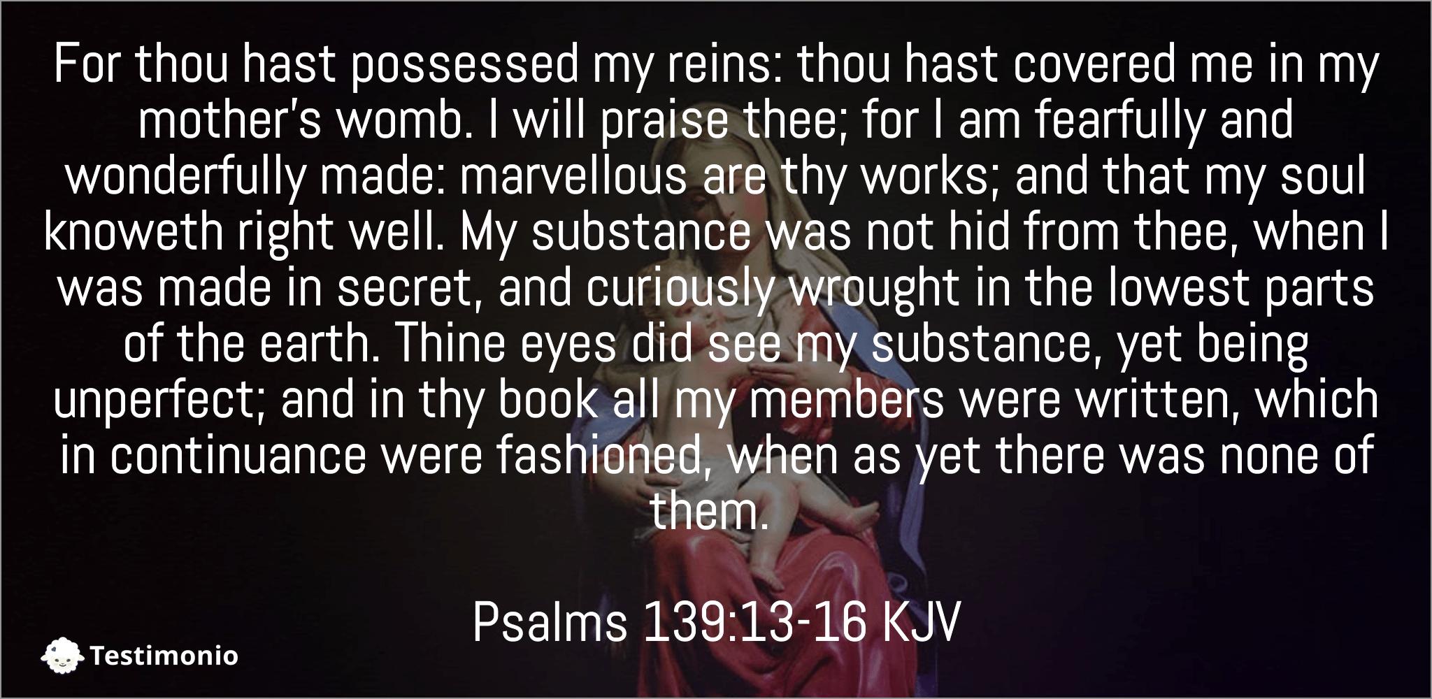 Psalms 139:13-16