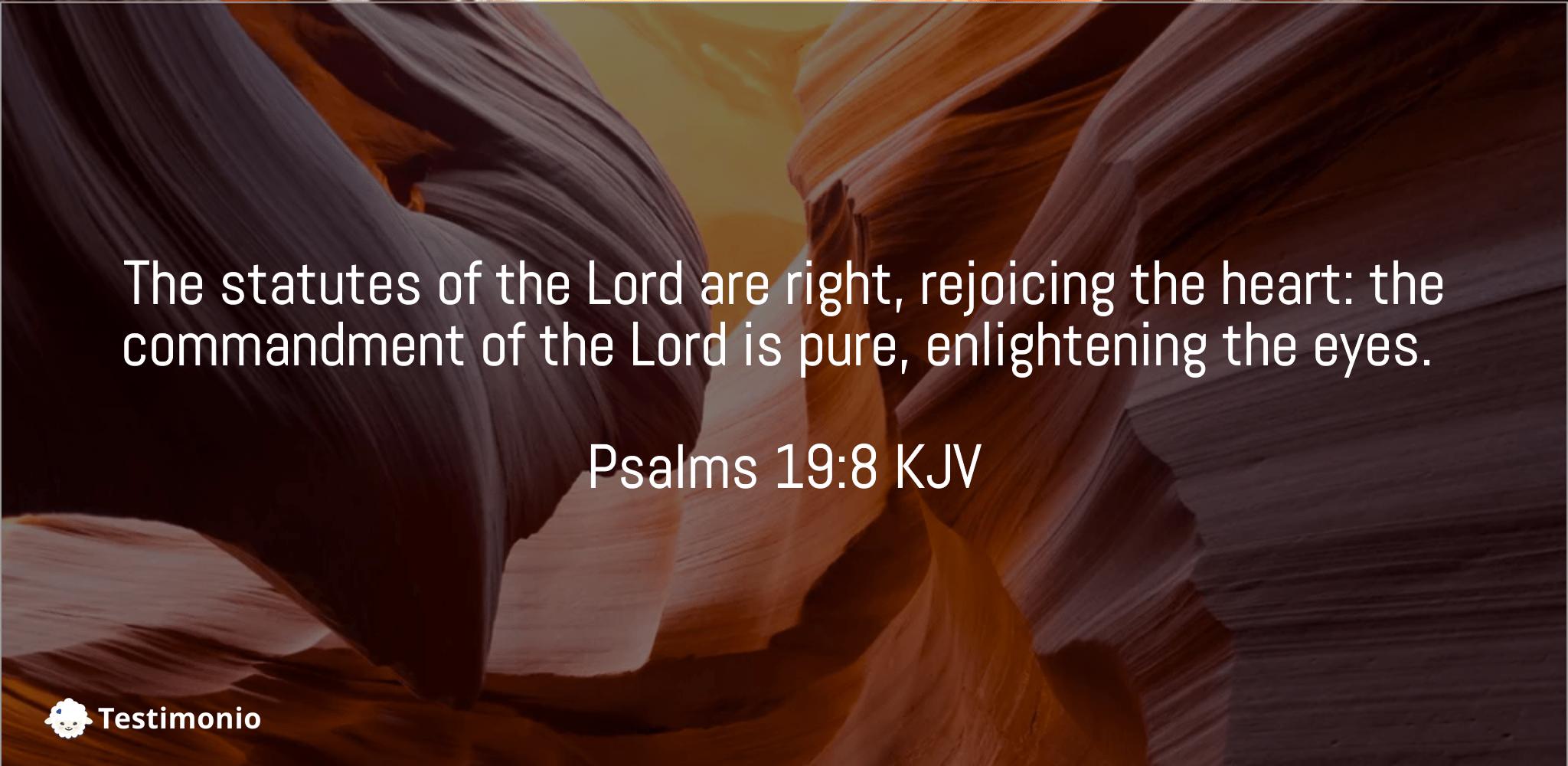 Psalms 19:8